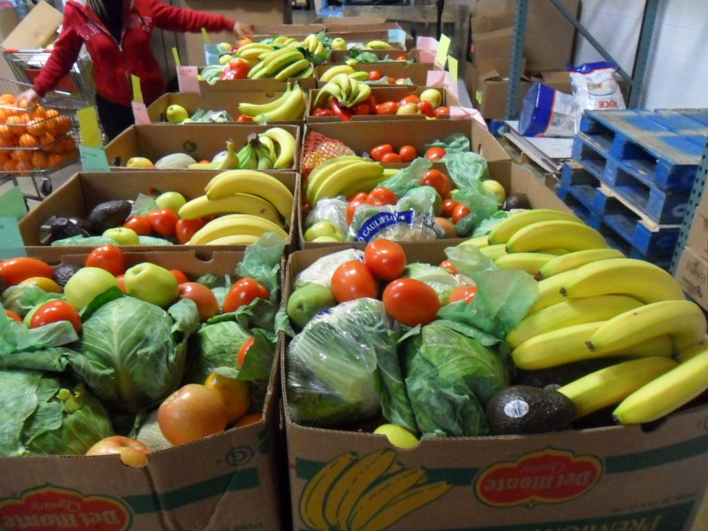 Fresh produce sorted to go to the needy seniors served by HSP