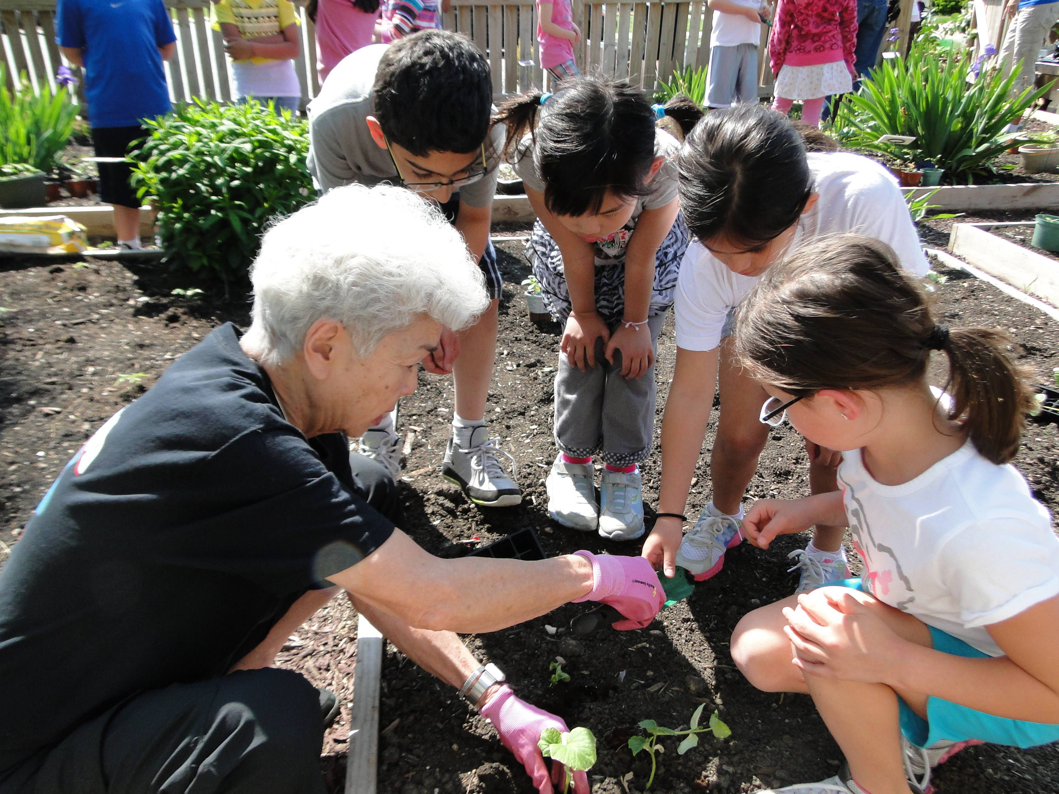 Volunteers from Friendship Village work on an intergenerational gardening program with students of Hoover School in Schaumburg.