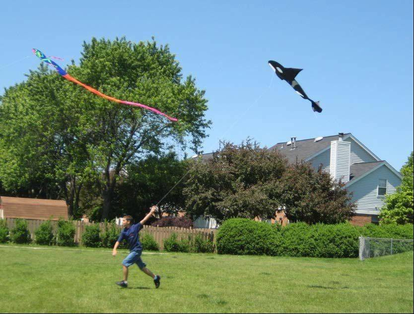Submitted by Schaumburg Park DistrictSchaumburg Park District will host Flying 4 Kids Sunday, May 5. Come out, bring a picnic, fly a kite and enjoy time in the outdoors.