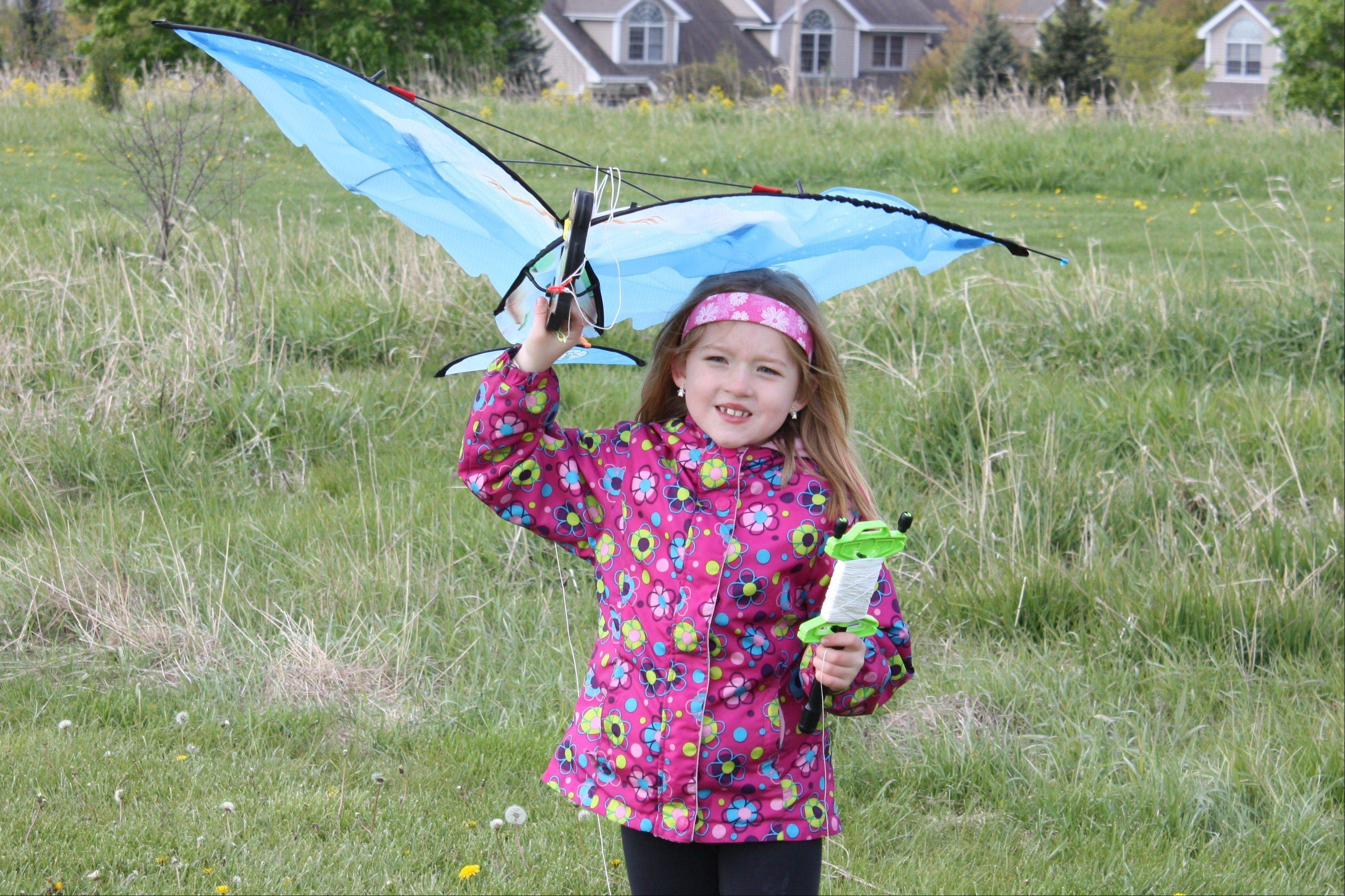 Youngsters can bring their kites for some airborne fun at the eighth annual Flying 4 Kids event at the Margreth Riemer Reservoir in Palatine.