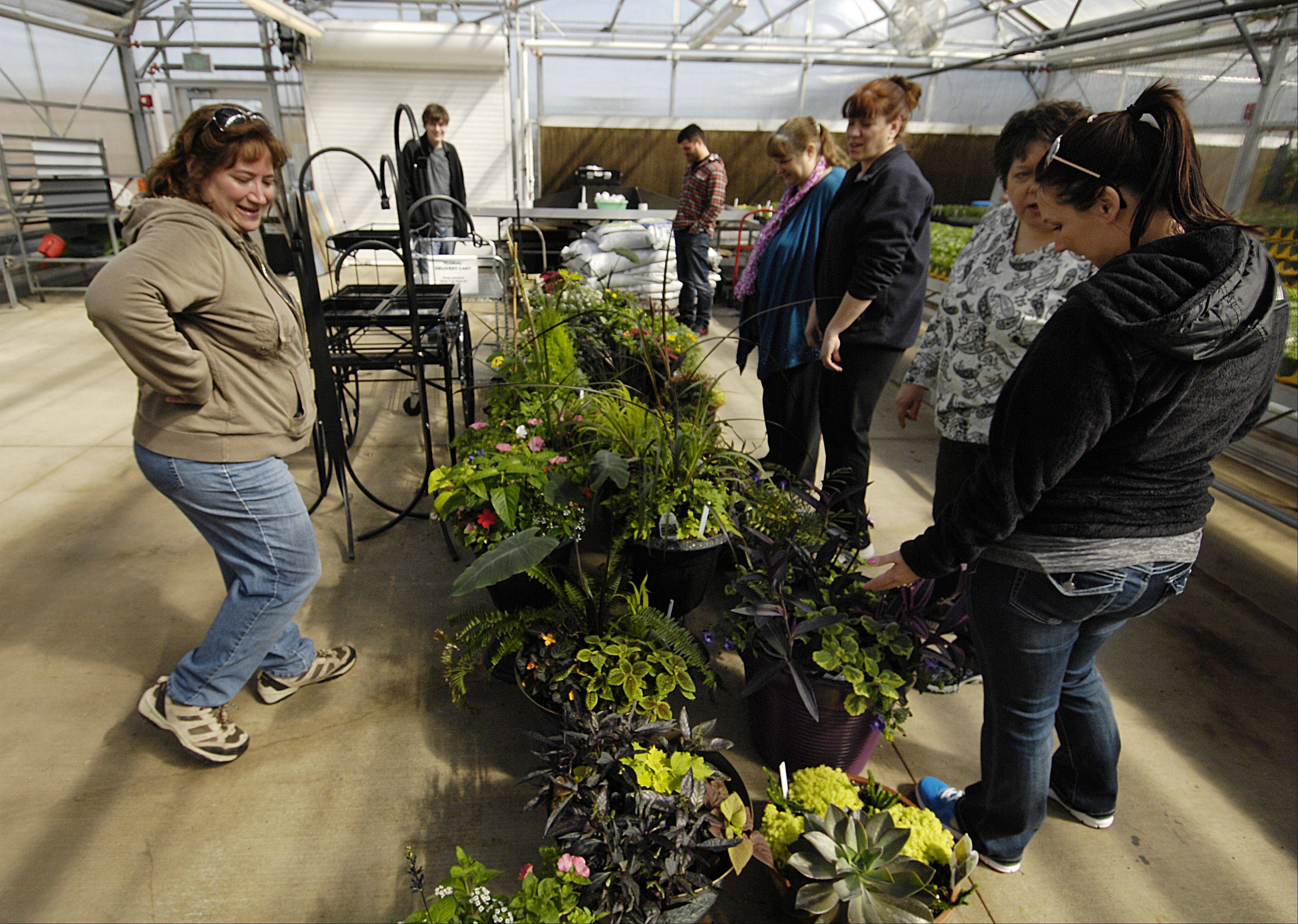 Amy Hull College of DuPage greenhouse supervisor and adjunct factuality member talks with students in the college's greenhouse.