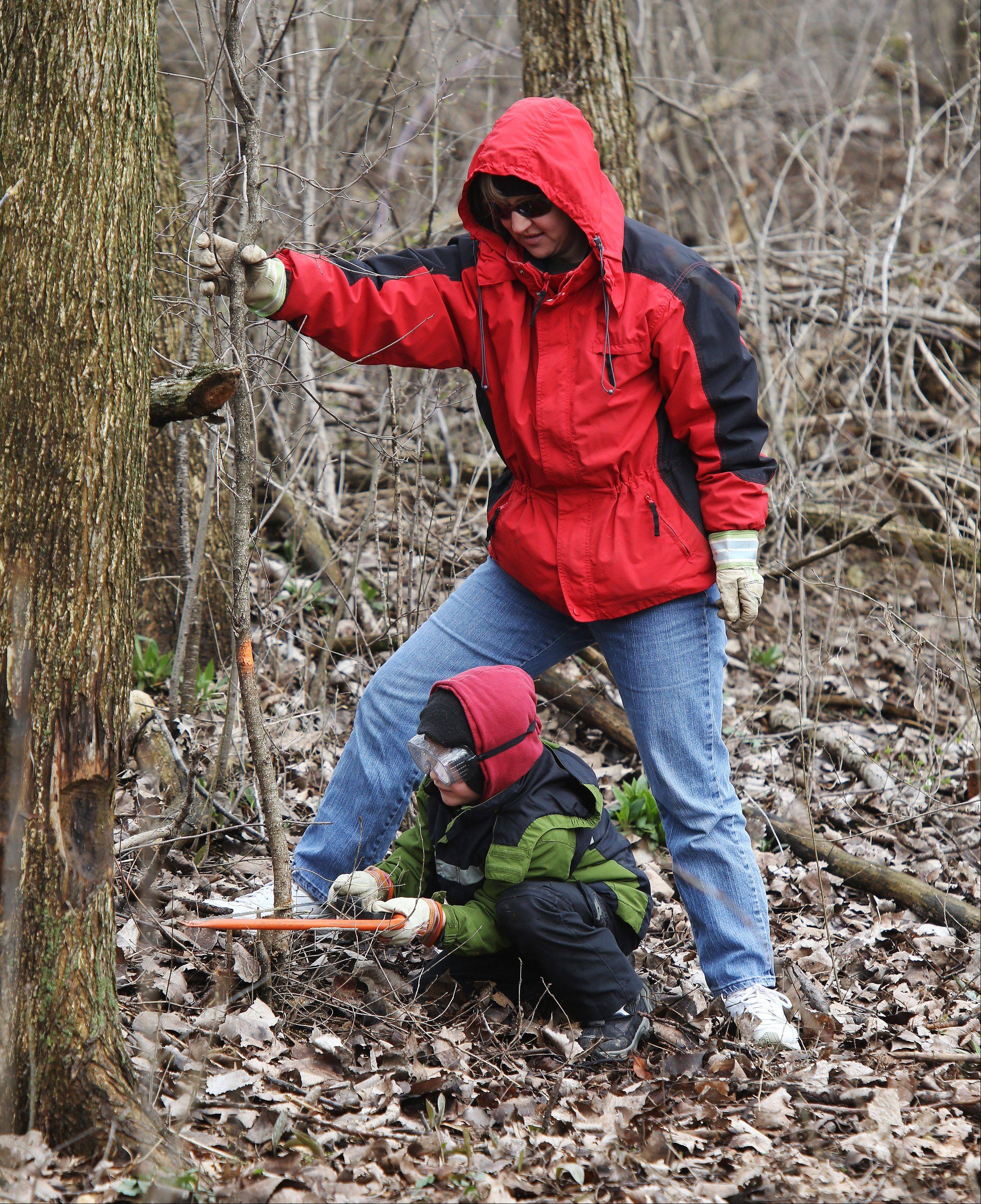 Volunteer Genevieve O'Keefe and her son, Kevin, 7, cut out buckthorn during the Buckthorn Busters program Wednesday at Independence Grove near Libertyville. The Earth Week event was conducted by the Lake County Forest Preserve.