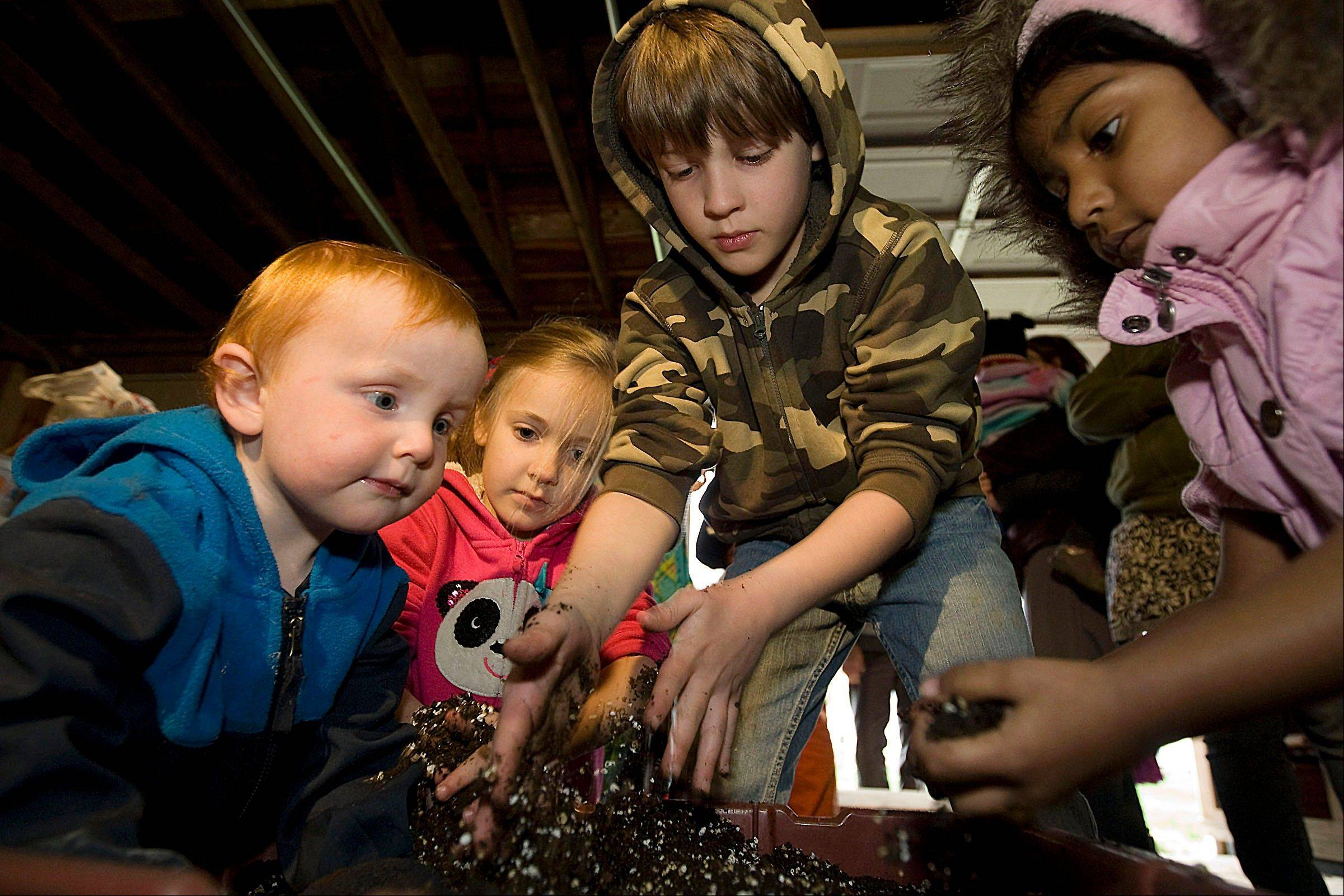 From left, Dirk Stephens, 15 months, Charlotte Bramer,6, Wyatt Bramer, 8, and Mridhvika Krishnaraj, 3, all of Decatur, mix perlite with soil before planting seeds during the seeding party of the ìWatch Me Growî group at the Golden Oldies Farm near Macon.
