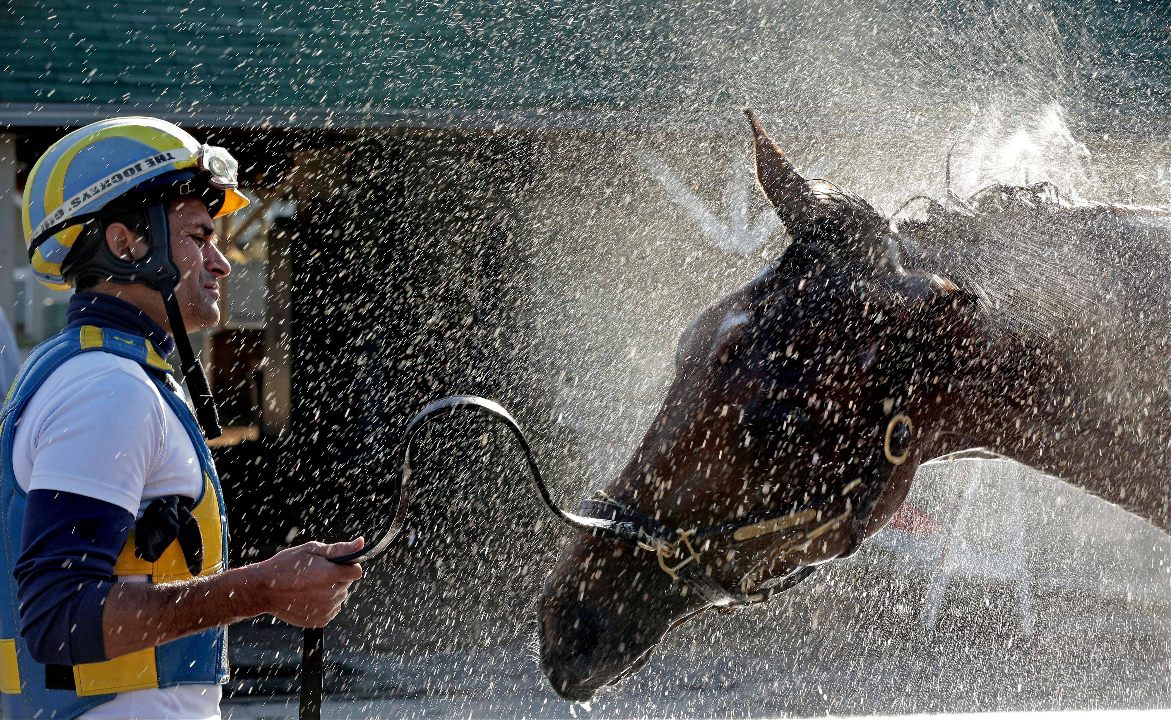 Trainer Rudy Rodriguez watches Kentucky Derby hopeful Vyjack get a bath after a workout Tuesday at Churchill Downs.