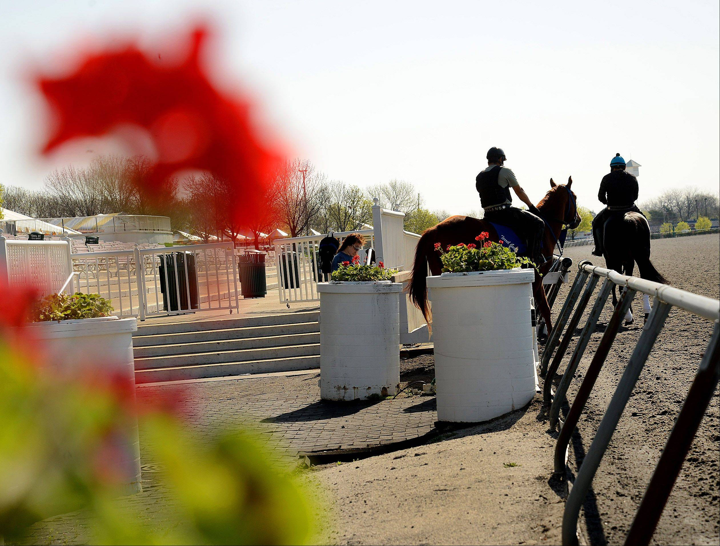 Images: Opening day preparations at Arlington International Racecourse