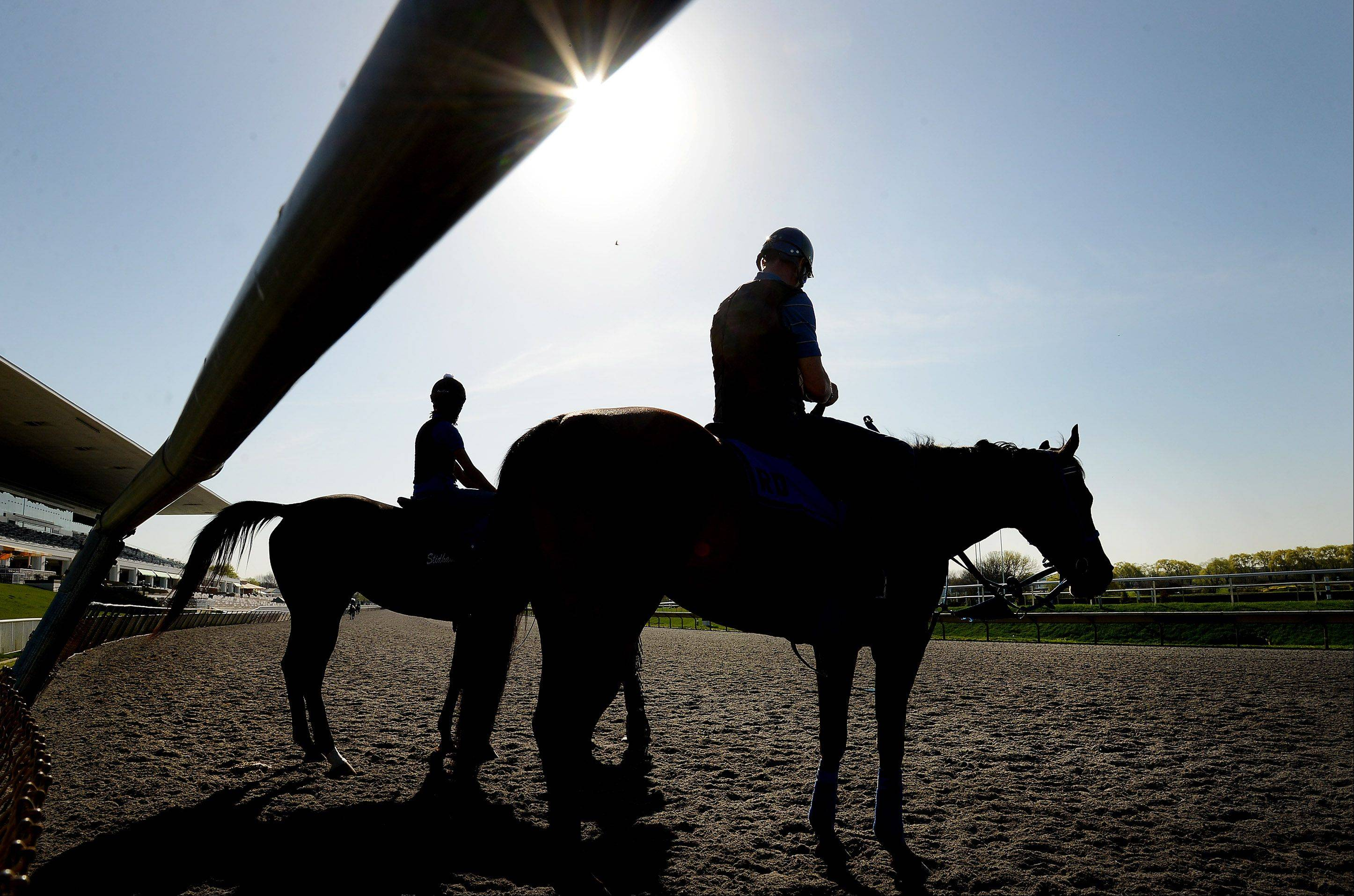 Horses take to the track in preparation for opening day at Arlington International Racecourse. The track opens its 89-meet season at 3 p.m. Friday, running through Labor Day weekend.
