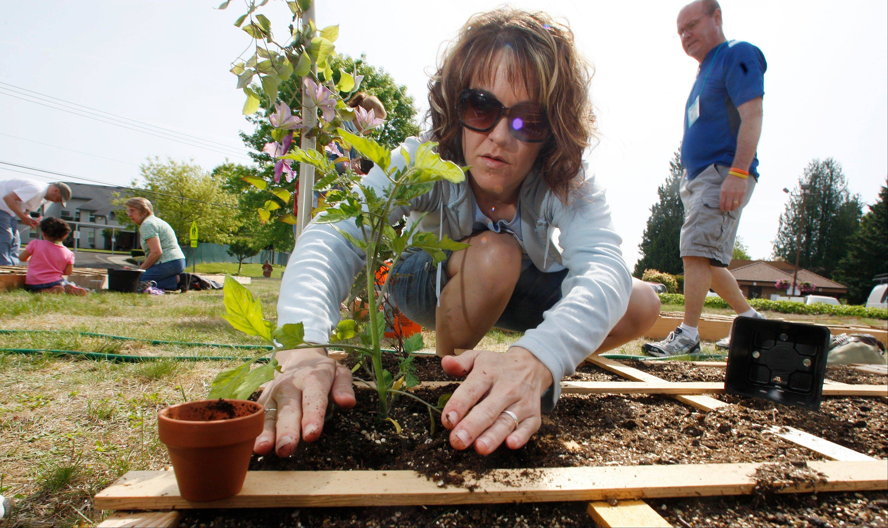 Nicole Wells works in a community garden at the Sherwood Presbyterian Church in Sherwood, Ore. Women have another good reason to exercise: It may help prevent kidney stones.