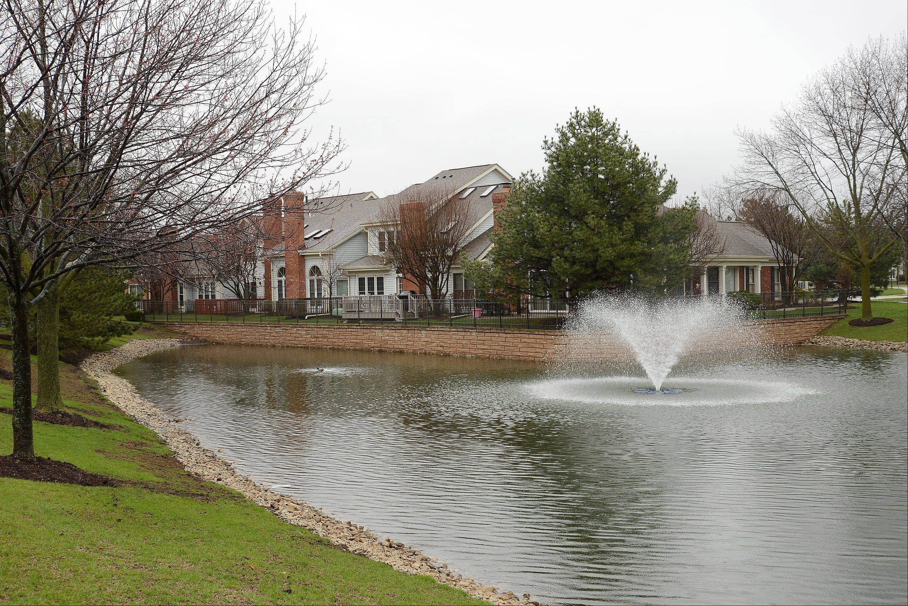 A pond and fountain provide a serene setting along Lake Arlington Drive.
