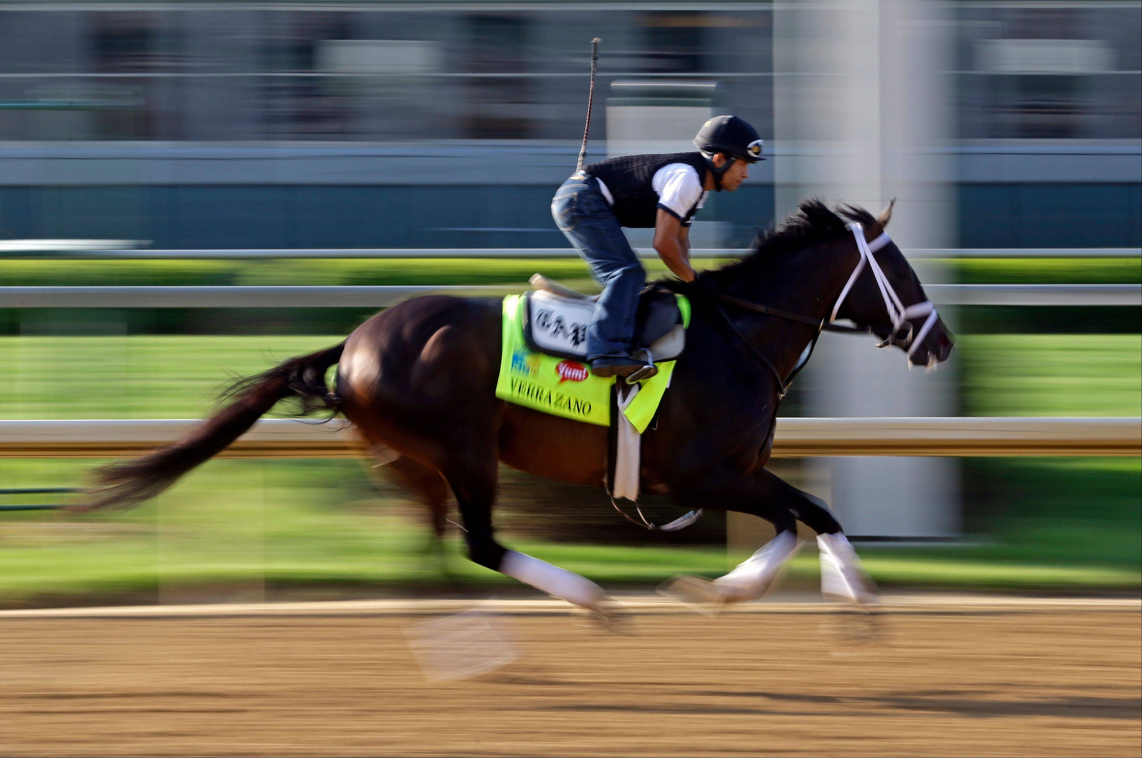 Since 1882, every horse that has won the Kentucky Derby started its racing career as a 2-year-old. In the past 57 years, 49 horses that debuted as 3-year-olds have tried and failed to win at Churchill Downs. It's known as the Curse of Apollo, and now some say there's never been a more likely candidate to break the curse than undefeated Verrazano, above.