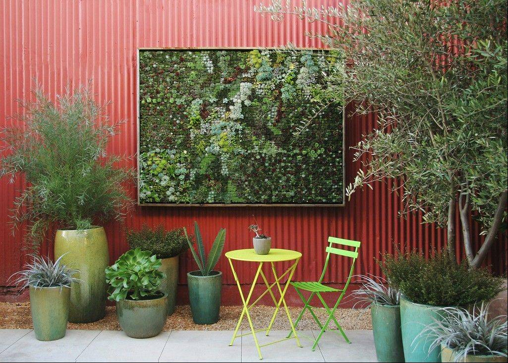 Living pictures — cuttings of assorted succulents woven together in everything from picture frames to pallet boxes — are hot among garden designers and landscapers this spring.