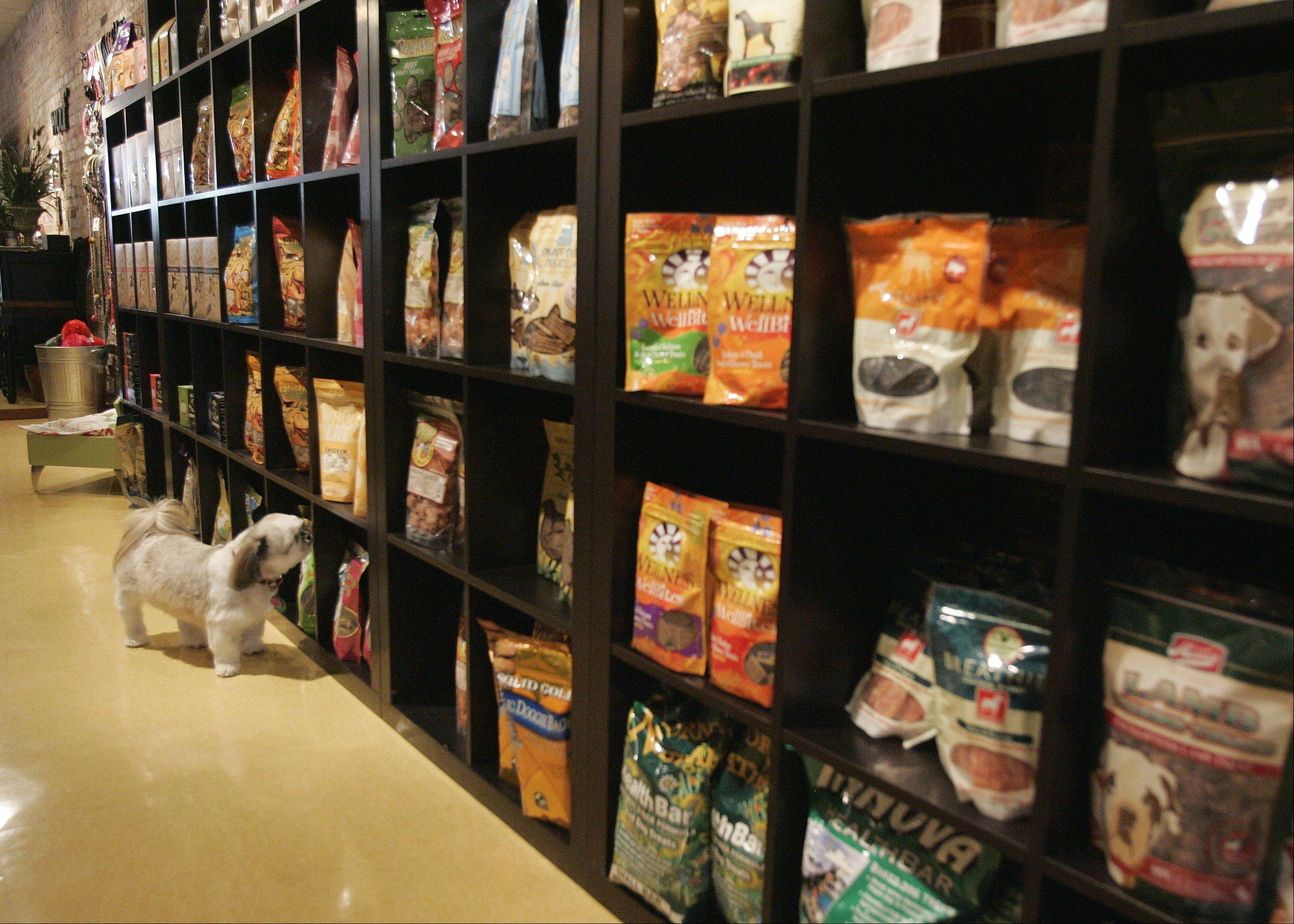 Buying pet food online may save you money.