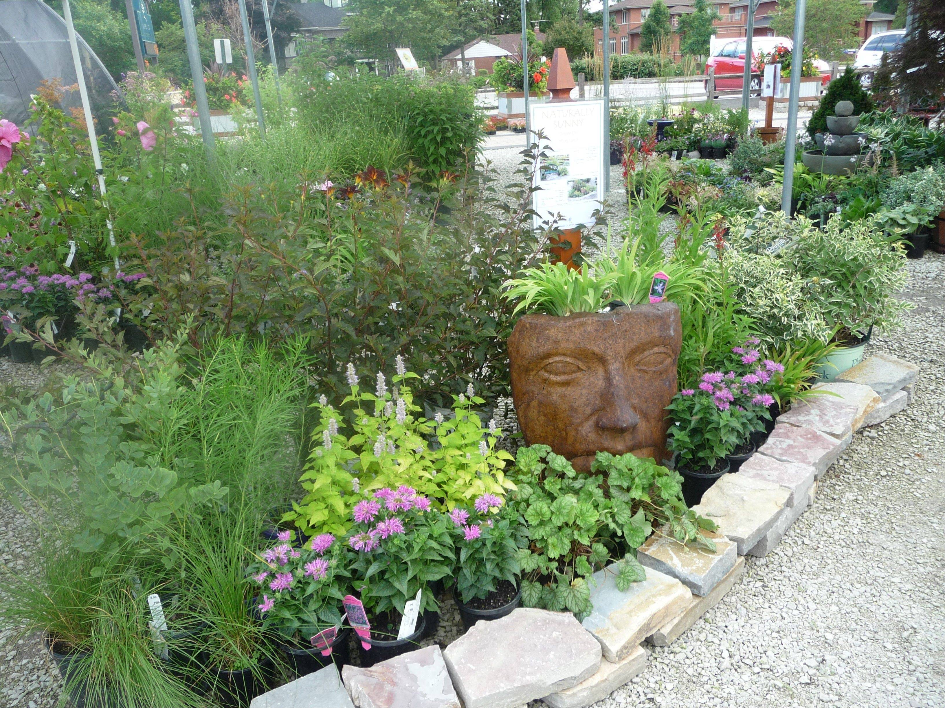 Lurvey's Garden Center in Des Plaines has plants and other products that will help customers build a sustainable landscape in their yard.
