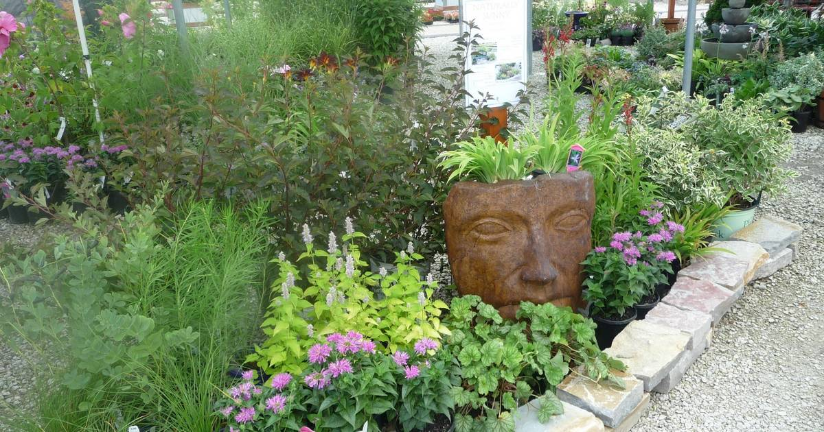 Curry Landscape And Garden : Sustainable landscaping is eco friendly and less work