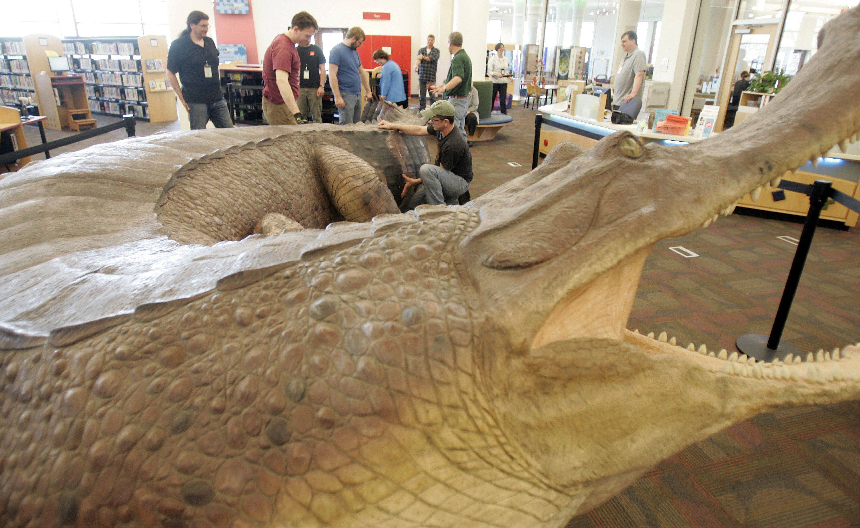 People gather around a super croc exhibit at the Gail Borden Library in Elgin Tuesday. The exhibit, which has been all over the world, is being shown for the first time at a library with this summer's stop at Elgin. It took two days to assemble the model of the prehistoric creature. The skull on the super croc is six feet long.