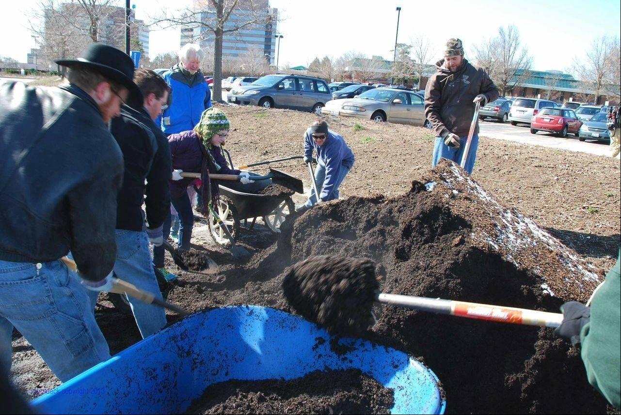 Roosevelt University community gardeners in Schaumburg dig into a pile of compost that originated from food and packaging waste at the university's Chicago Campus.