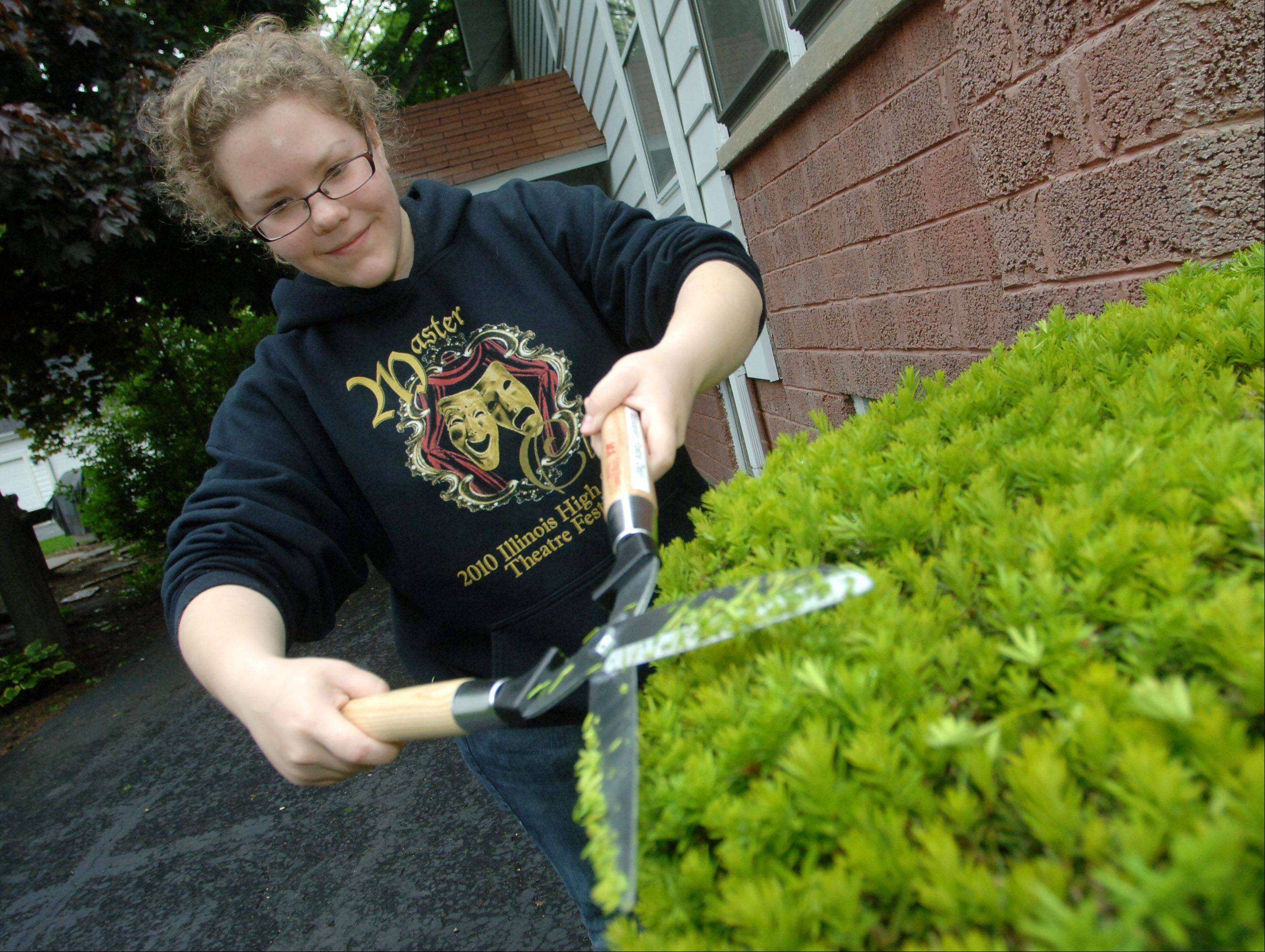 Arika Egan trims bushes at a home on West Park Street during the 2011 A-May-Zing Mundelein event.