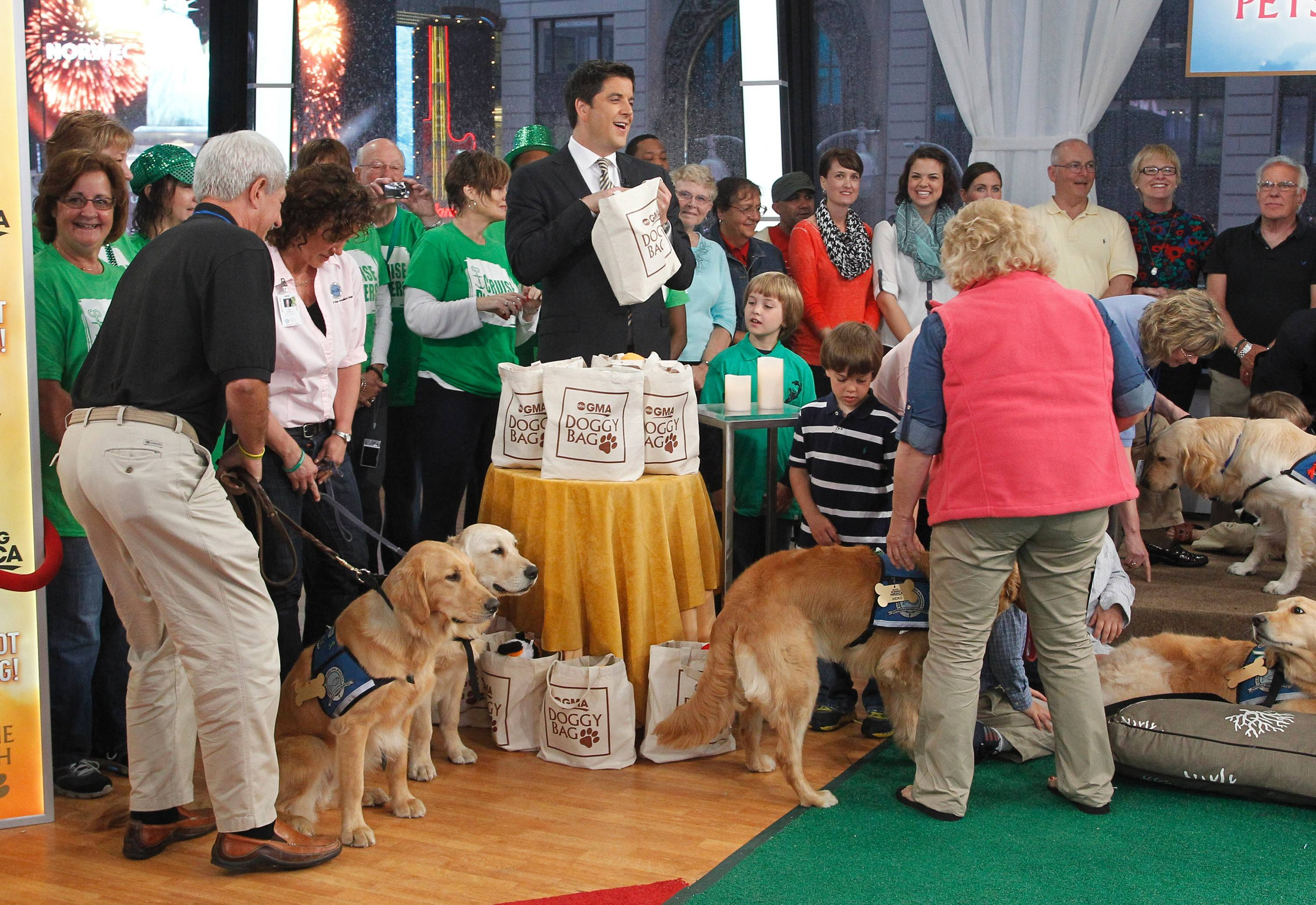"Mike Flaherty, left in dark shirt, was among the handlers from Lutheran Church Charities K-9 Comfort Dogs program honored Wednesday on ""Good Morning America."" The handlers and their dogs were recognized for their work in Boston and Newtown, Conn."