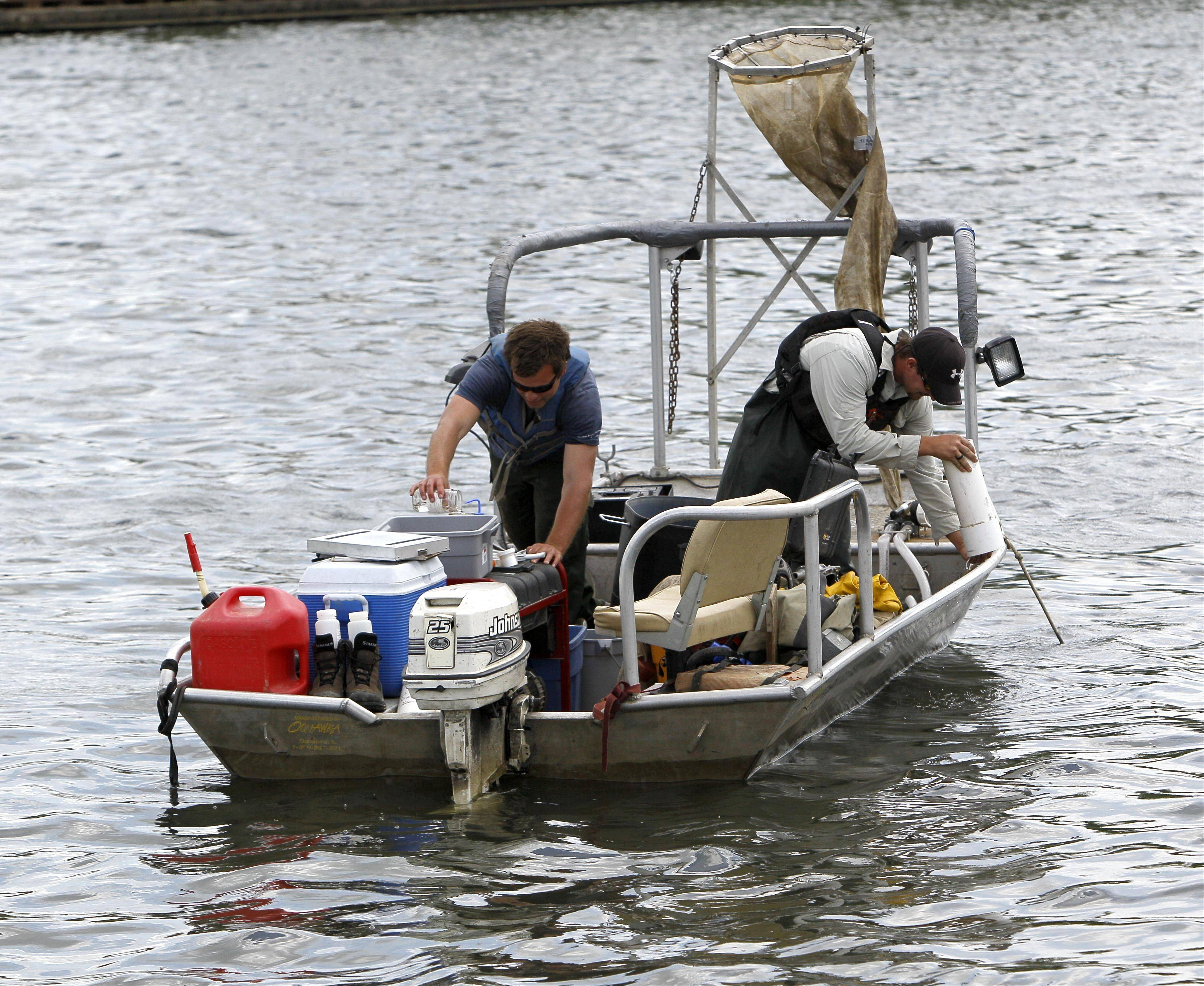 Biologists take a water sample looking for Asian carp eggs in the southern branch of the Chicago River.