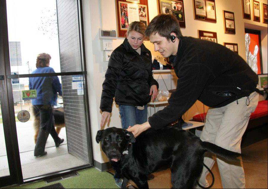 A dog is greeted at the ADOGO pet hotel in Minnetonka, Minn.