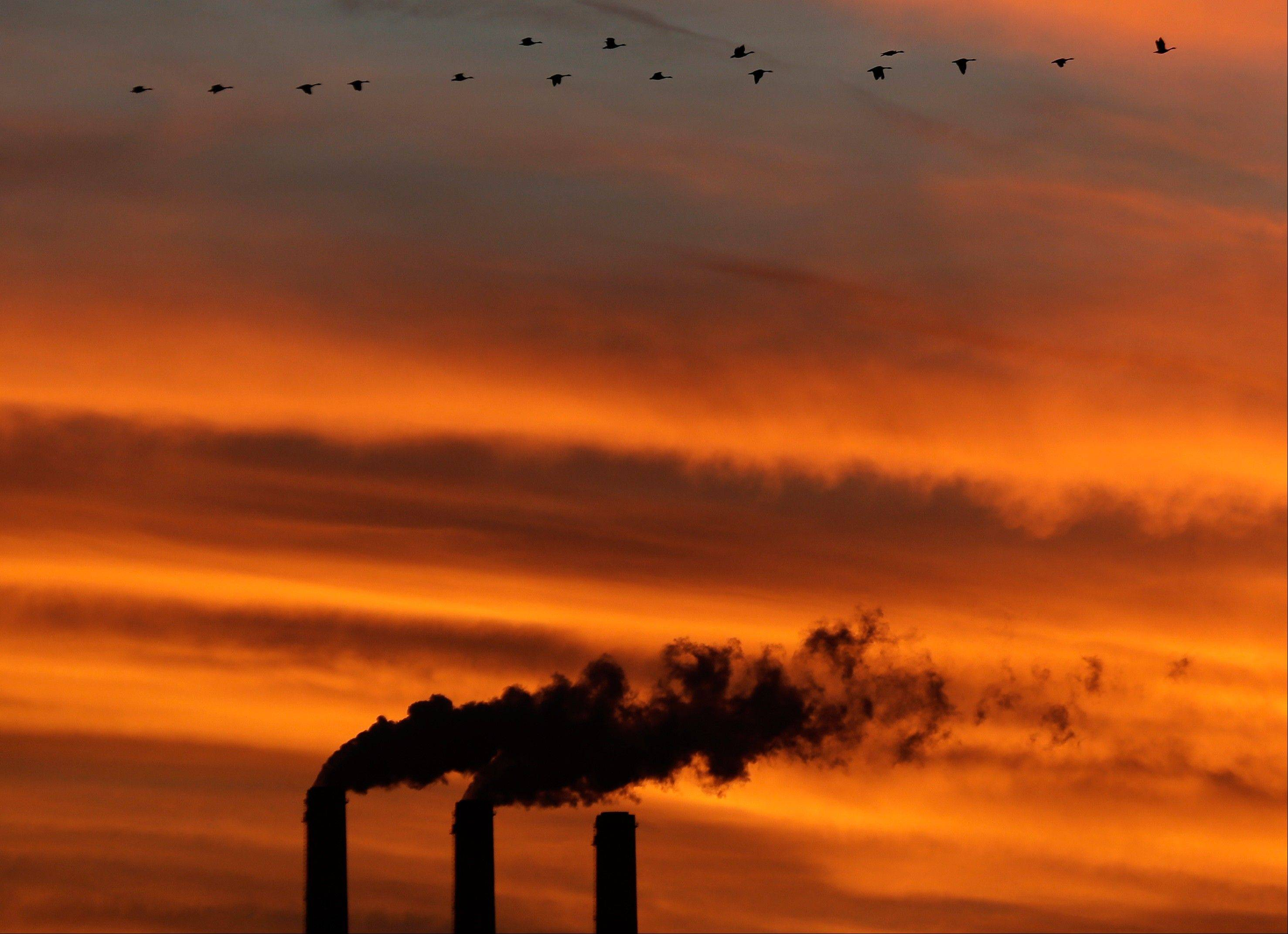 A flock of Geese fly past the smokestacks at the Jeffrey Energy Center coal power plant as the sun sets near Emmett, Kan.