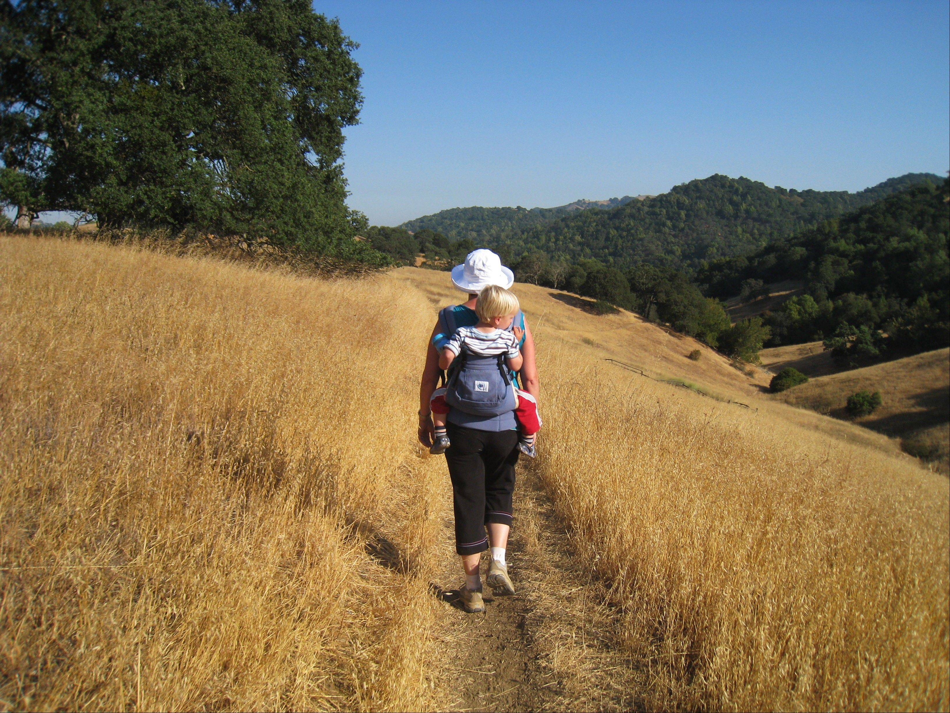 Baby Maxwell enjoys the views from a backpack carrier along the Pena Trail in Calero County Park with his mother on a rugged Stroller Hike in San Jose, Calif.