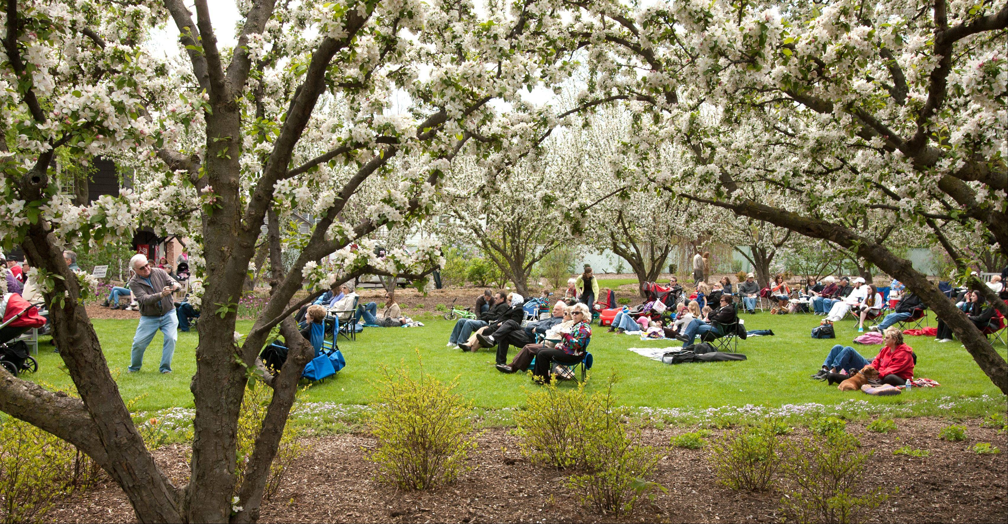 Music lovers and families enjoy a Lilac Time concert featuring Bill O'Connell's Chicago Skyliners Big Band Sunday at Lilacia Park in Lombard.