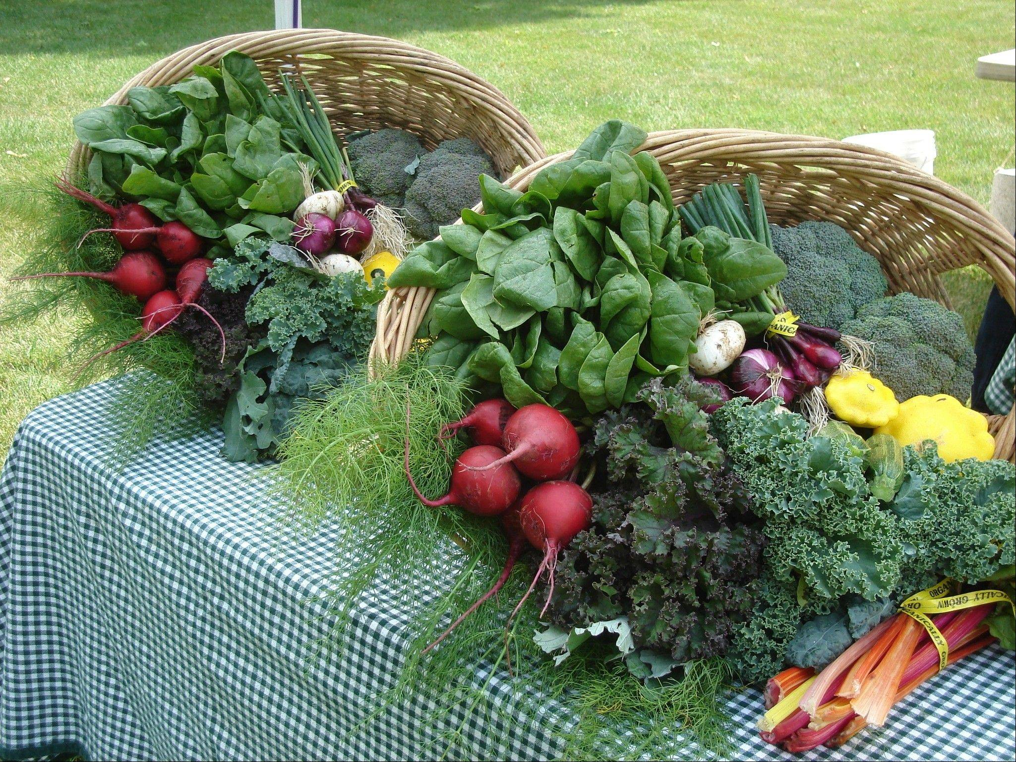 Many of the vegetables we eat are actually the leaves of plants. These baskets of home-grown organic vegetables from Prairie Crossing Farms are brimming with broccoli, patty pan squash, Swiss chard, kale, fennel, turnips and spinach