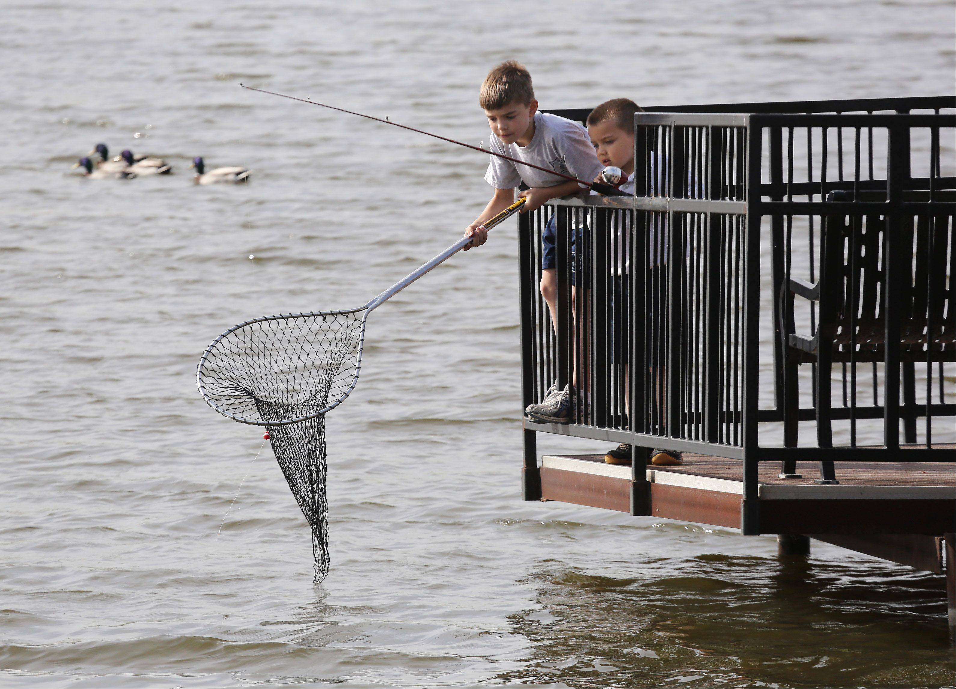 Andrew Chambers, 10, and his younger brother Jeremy, 5, of Vernon Hills, use a net to fish off the pier Monday on Big Bear Lake in Century Park in Vernon Hills.