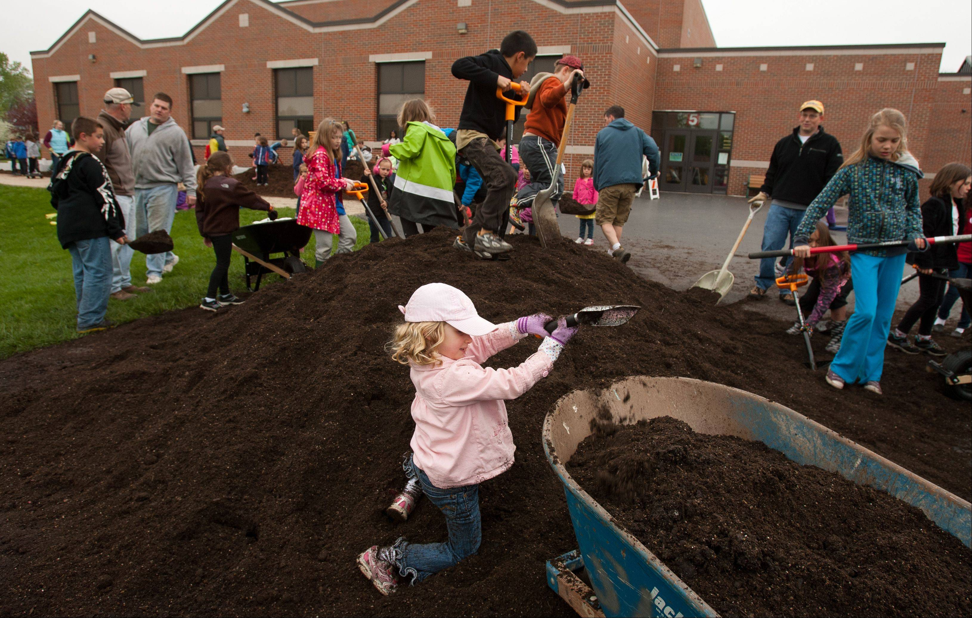 Maddie Cook, 4, of Lombard, along with other students and parents at Hammerschmidt School in Lombard, prepare garden beds for the Learn + Play gardens to be built at the school.