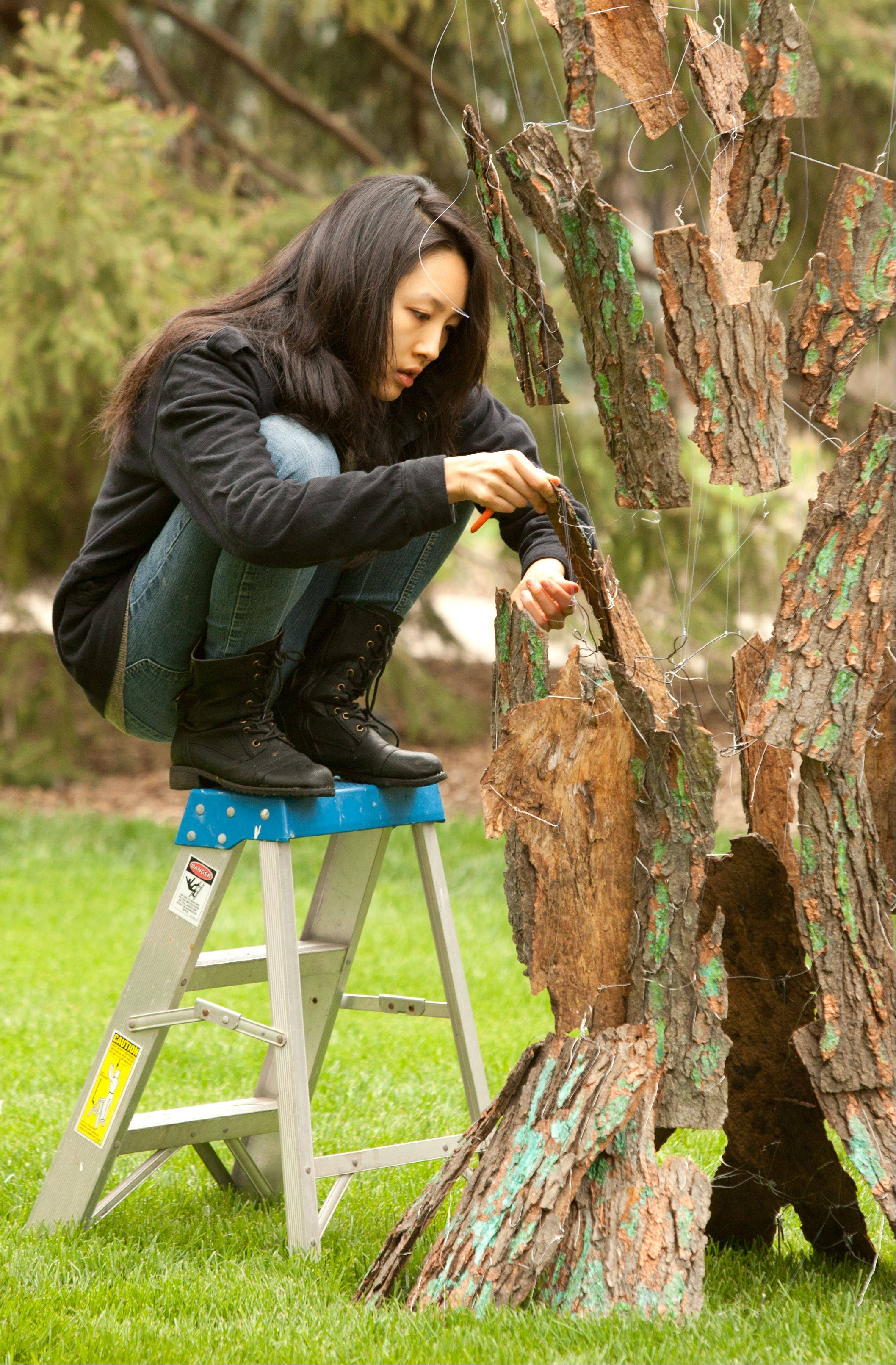 Neuqua Valley student Kathy Tae finishes display preparation for the Spring in Suspense project, at the fifth annual DuPage Invitational Sculpture Show at Lilacia Park in Lombard. Other students Halston Hazdra and Michael Wolowski worked on the project under the guidance of teachers Adam Johnson and Steve Jones.