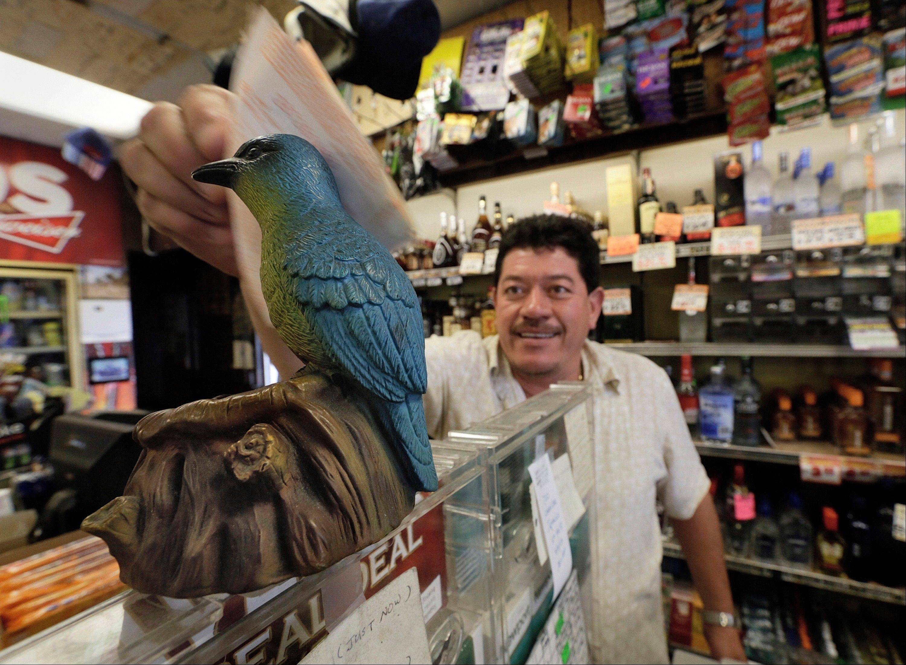 "Ronald Marin rubs his lottery tickets on the wings of a ""bluebird"" statue for good luck at the Bluebird Liquor store in Hawthorne, Calif. Thursday, May 16, 2013. The multistate lottery's website said the Powerball drawing jackpot has soared to at least $550 million for next drawing to be held Saturday."