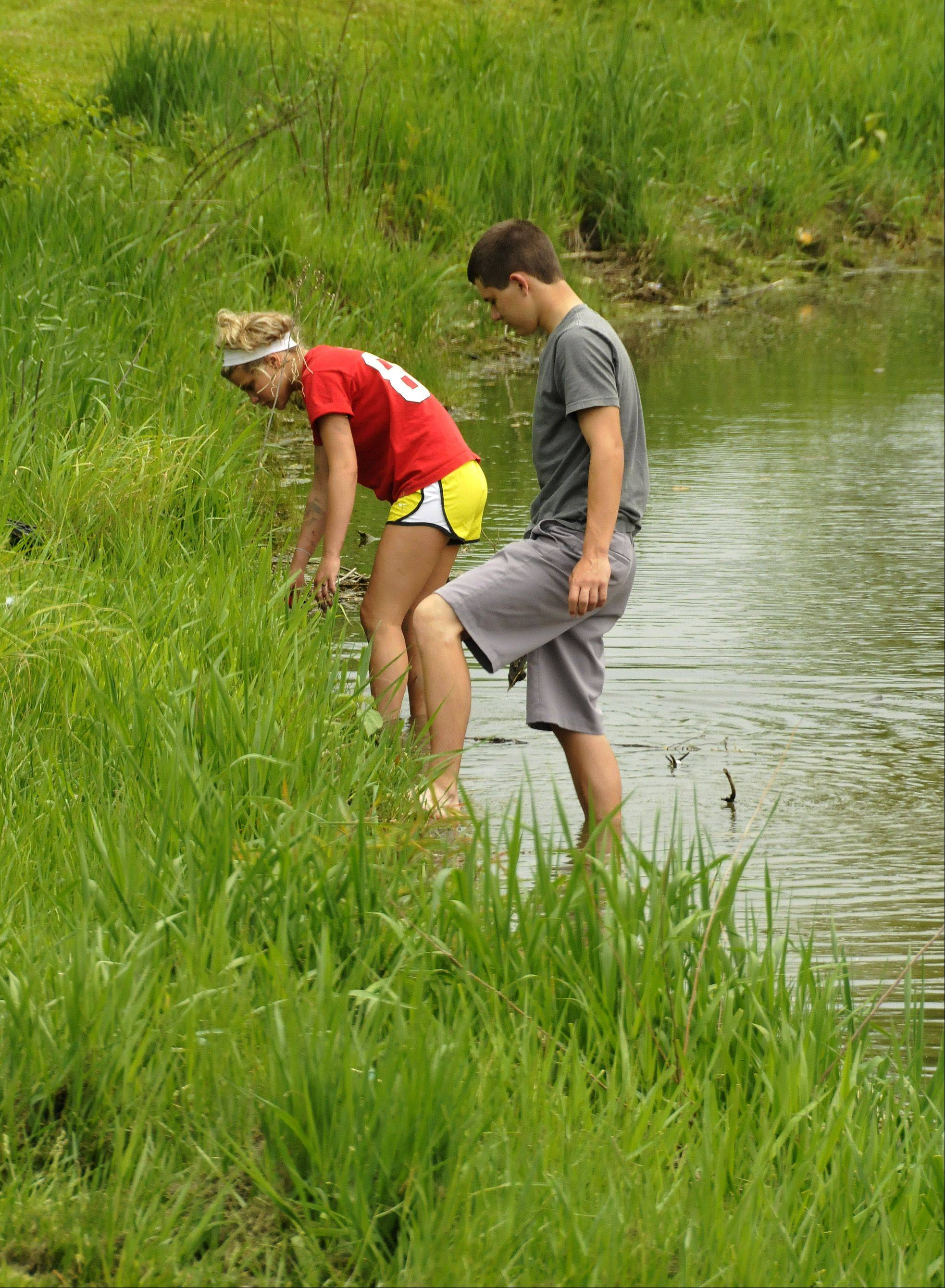 Sami Berk, left, and Andrew Heinen put plants along the edges of Waubonsie Lake to combat erosion.