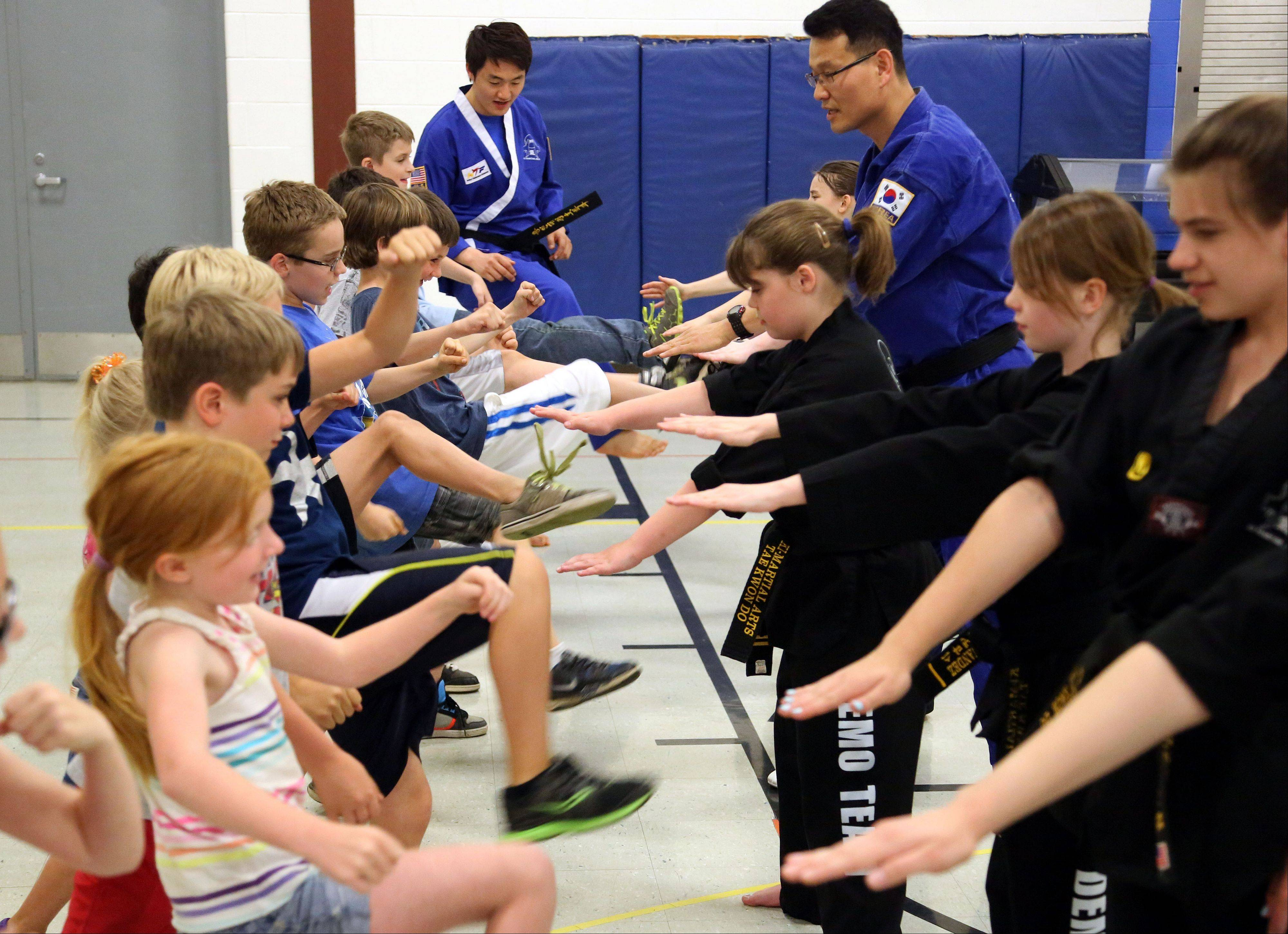Members of Ki Martial Arts teach kids at Mechanics Grove School to kick, during an event called Learning and the Arts in Mundelein.