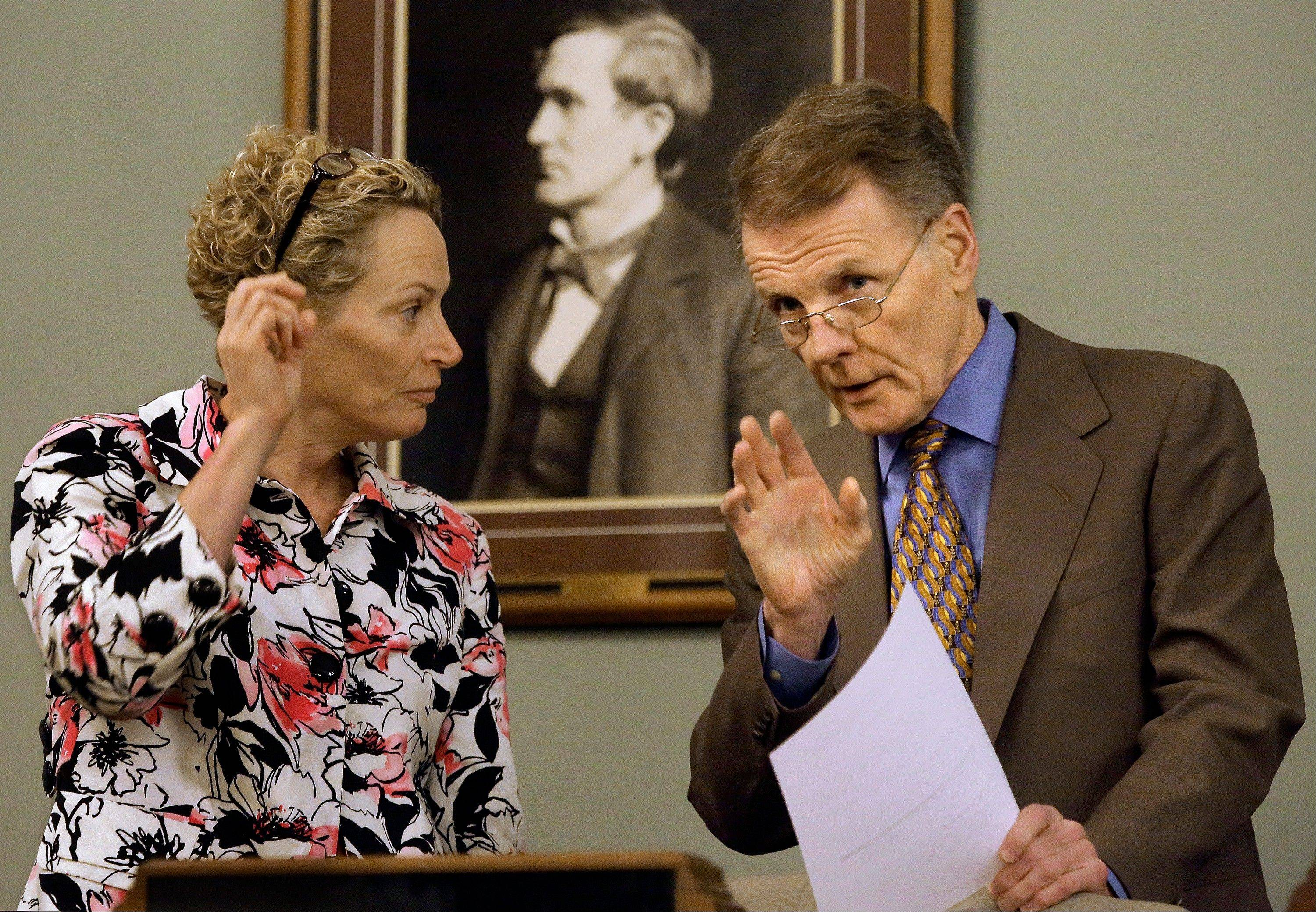 Speaker of the House Michael Madigan, a Chicago Democrat, talks with Rep. Elaine Nekritz, a Northbrook Democrat, during a House committee hearing on pension legislation Thursday at the Illinois State Capitol.