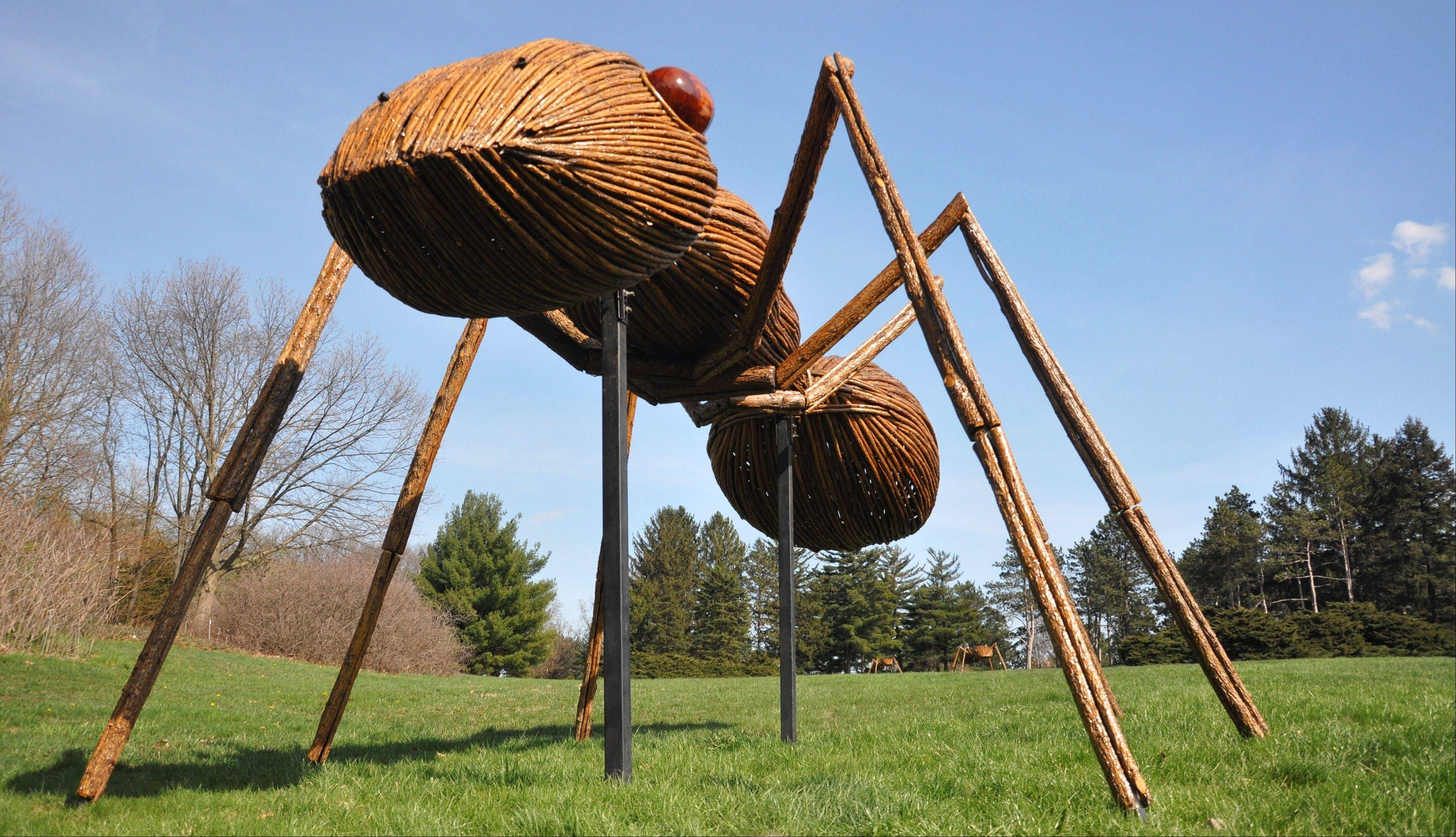 The Morton Arboretum in Lisle is going buggy this summer with larger-than-life insects on display through September.