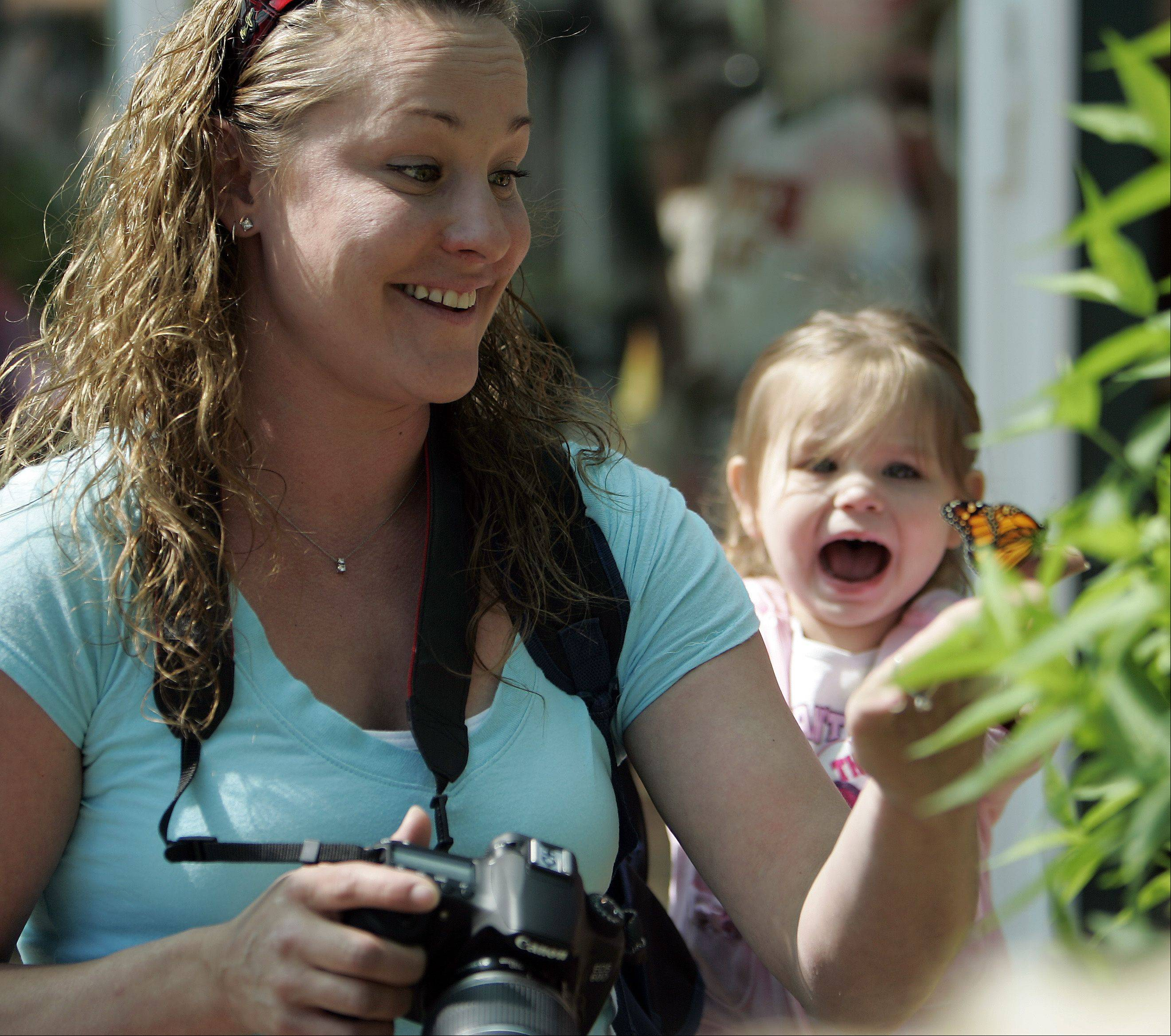 Two-year-old Ava Luhmann reacts as her mother Jennifer Luhmann, both of Cary, holds a butterfly during the 10th anniversary of the Butterfly House at Peck Farm Park in Geneva Friday. Seven types of butterflies were released.