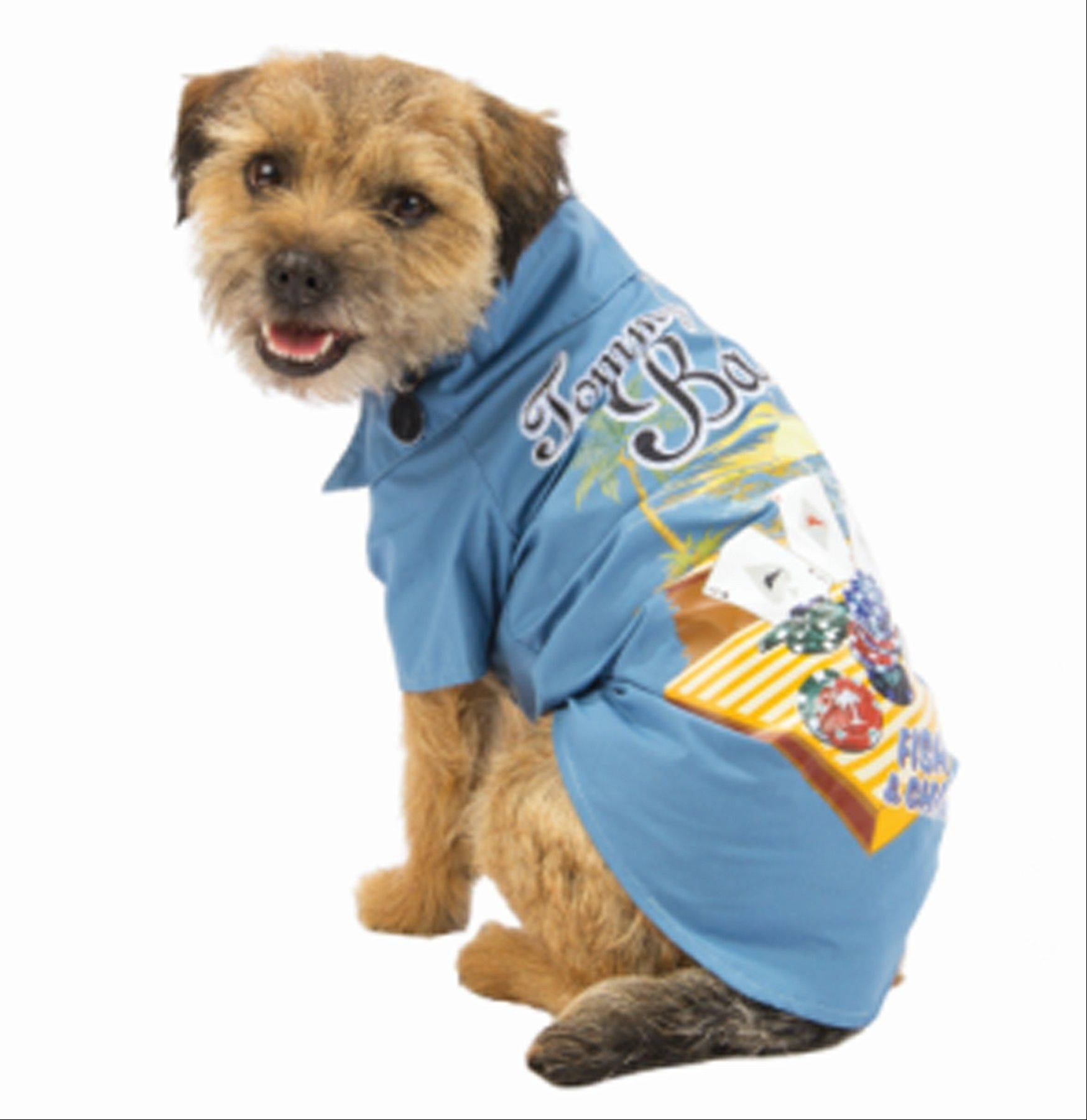 Tommy Bahama Pets will be in PetSmart Inc. stores through August. There's a designer shirt and a dress with a ruffled skirt made with Bahama's traditional hibiscus fabric. There are other shirts with palm trees and fish and chips, an Aloha Tee, hats and toys in the shape of thongs.