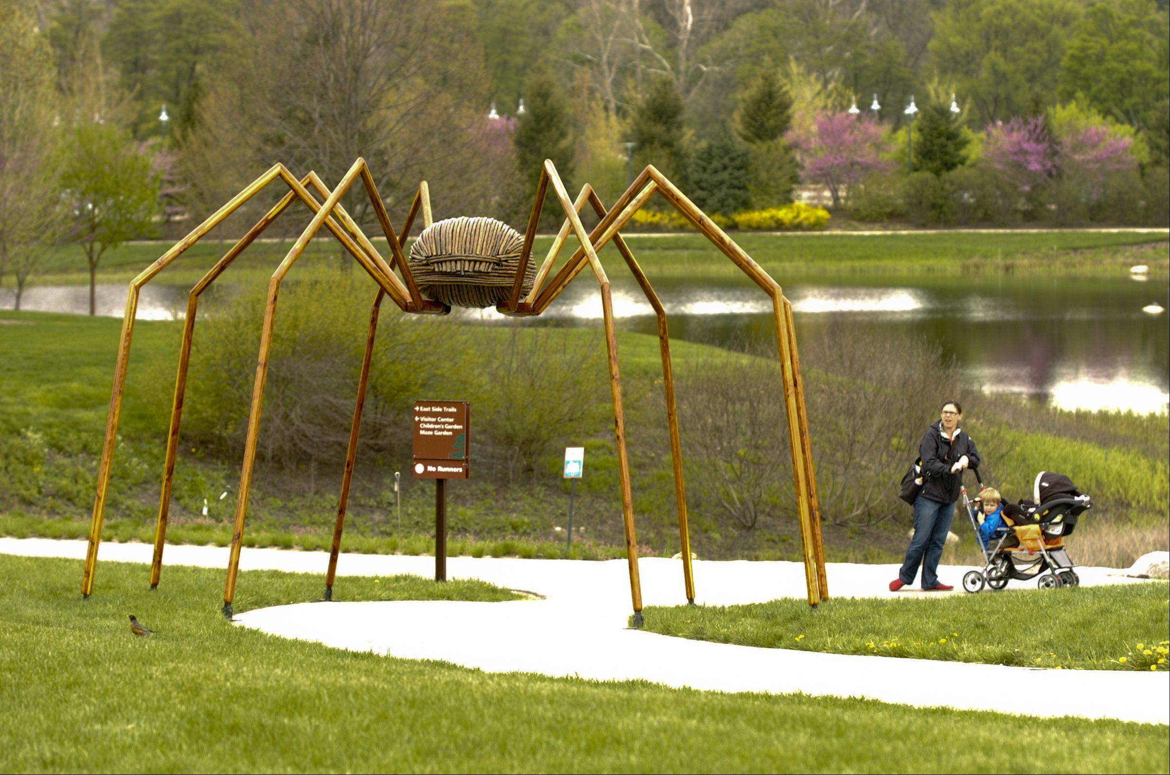 Visitors to the Morton Arboretum check out the huge daddy long leg spider that is part of artist David Rogers� Big Bugs exhibition in Lisle.