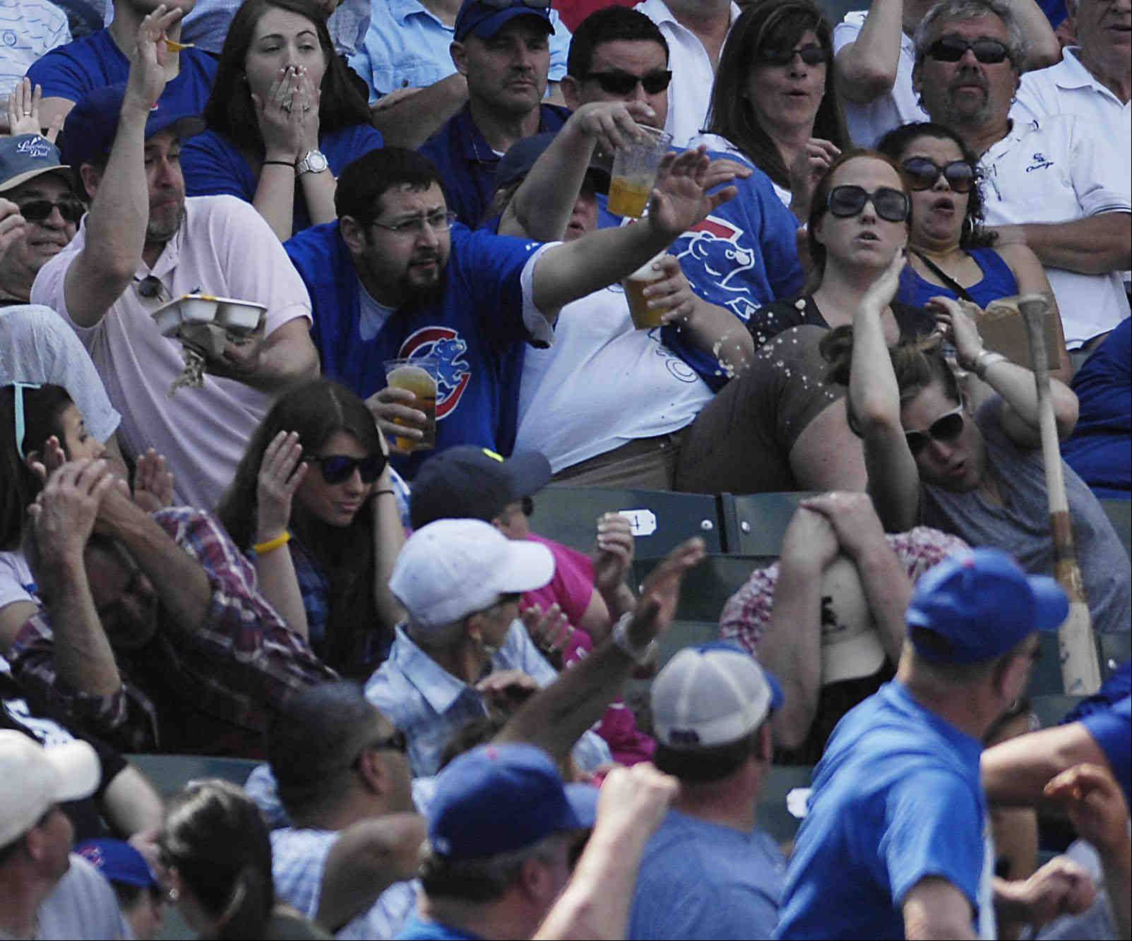Fans above the third base dugout dodge a flying bat that left the hands of Chicago Cubs catcher Dioner Navarro in the sixth inning.