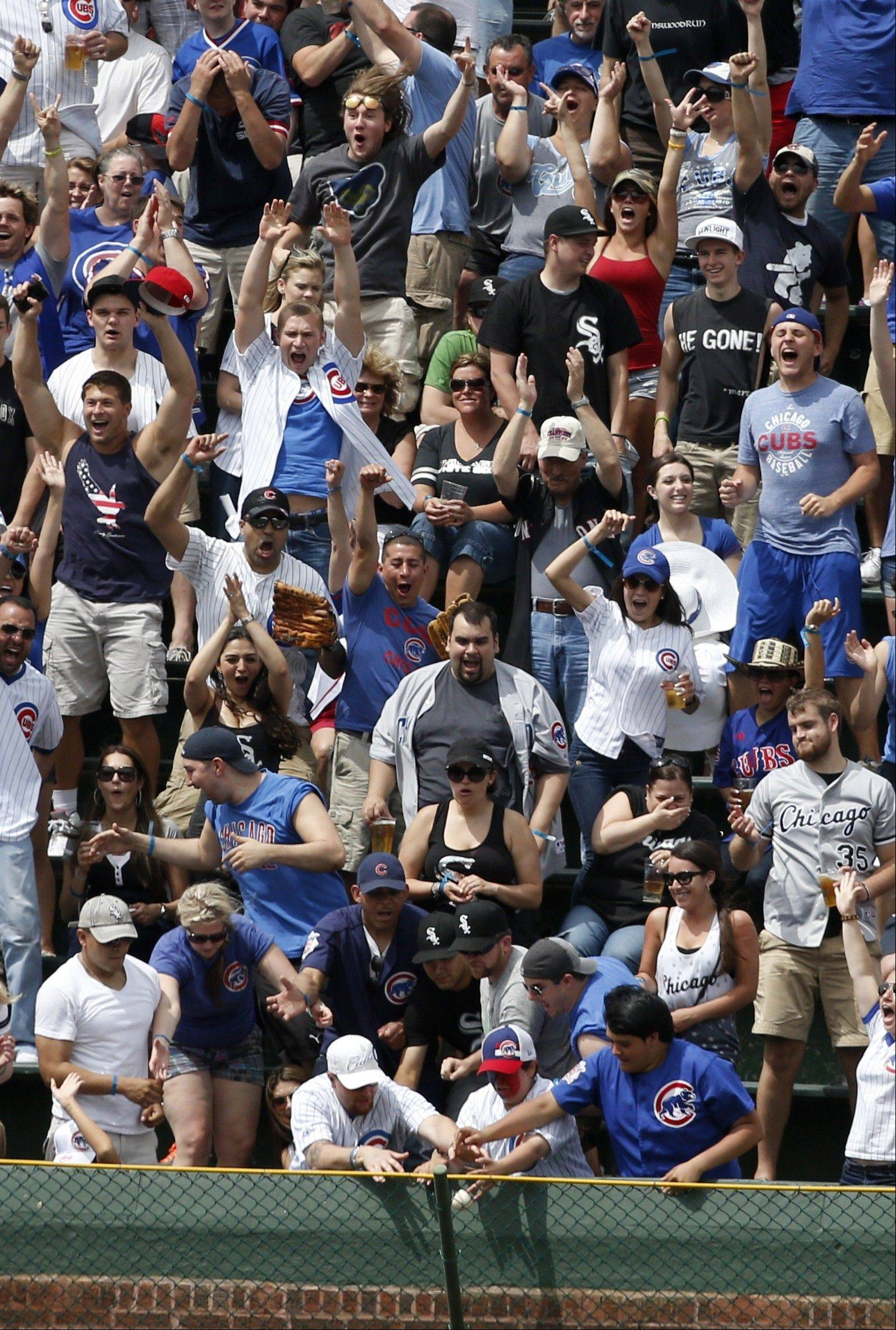 Fans in the left field bleachers scramble for a grand slam by Chicago Cubs' Travis Wood off Chicago White Sox starting pitcher Jake Peavy, as others cheer during the fourth inning of an interleague baseball game Thursday, May 30, 2013, in Chicago.
