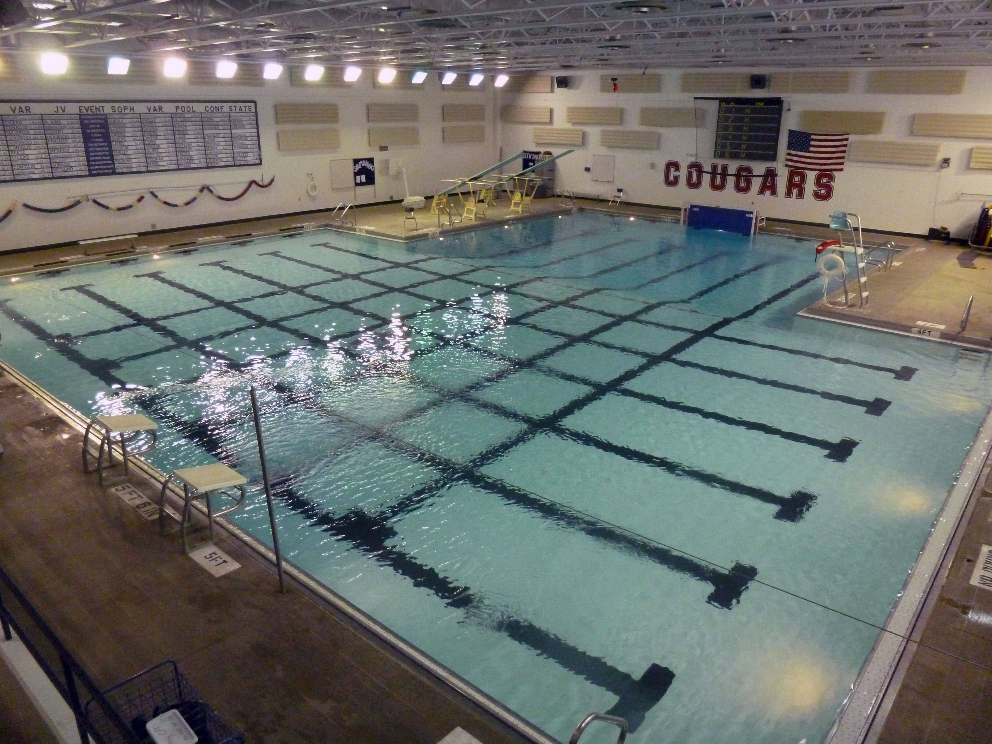 The swimming pool at Conant High School will be the first of District 211's five high schools to receive renovations in 2014. Coaches say this pool design, which is the same at all the schools, has prevented student athletes from properly training for competition.