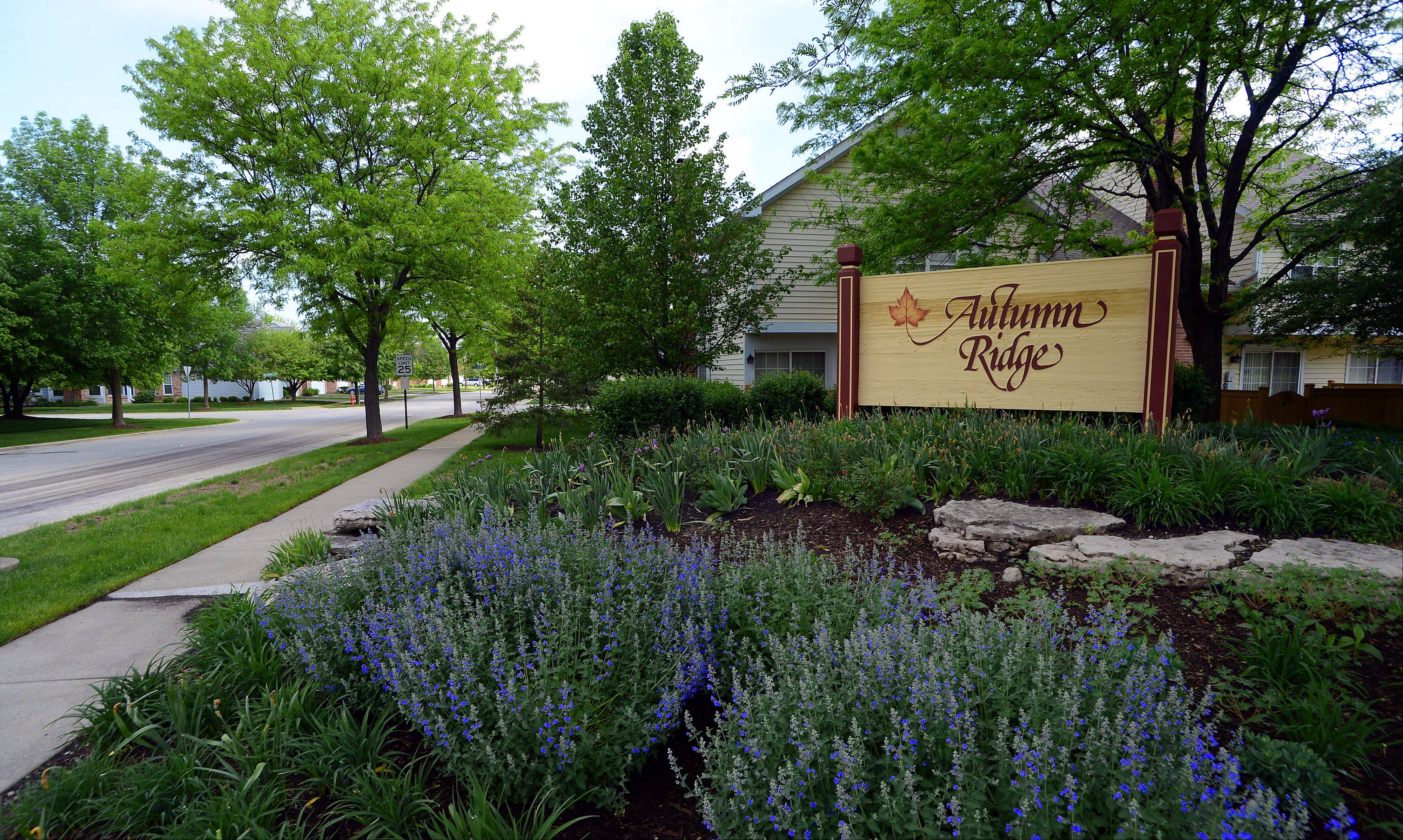 The homeowners association at Autumn Ridge provides for exterior maintenance and landscaping.