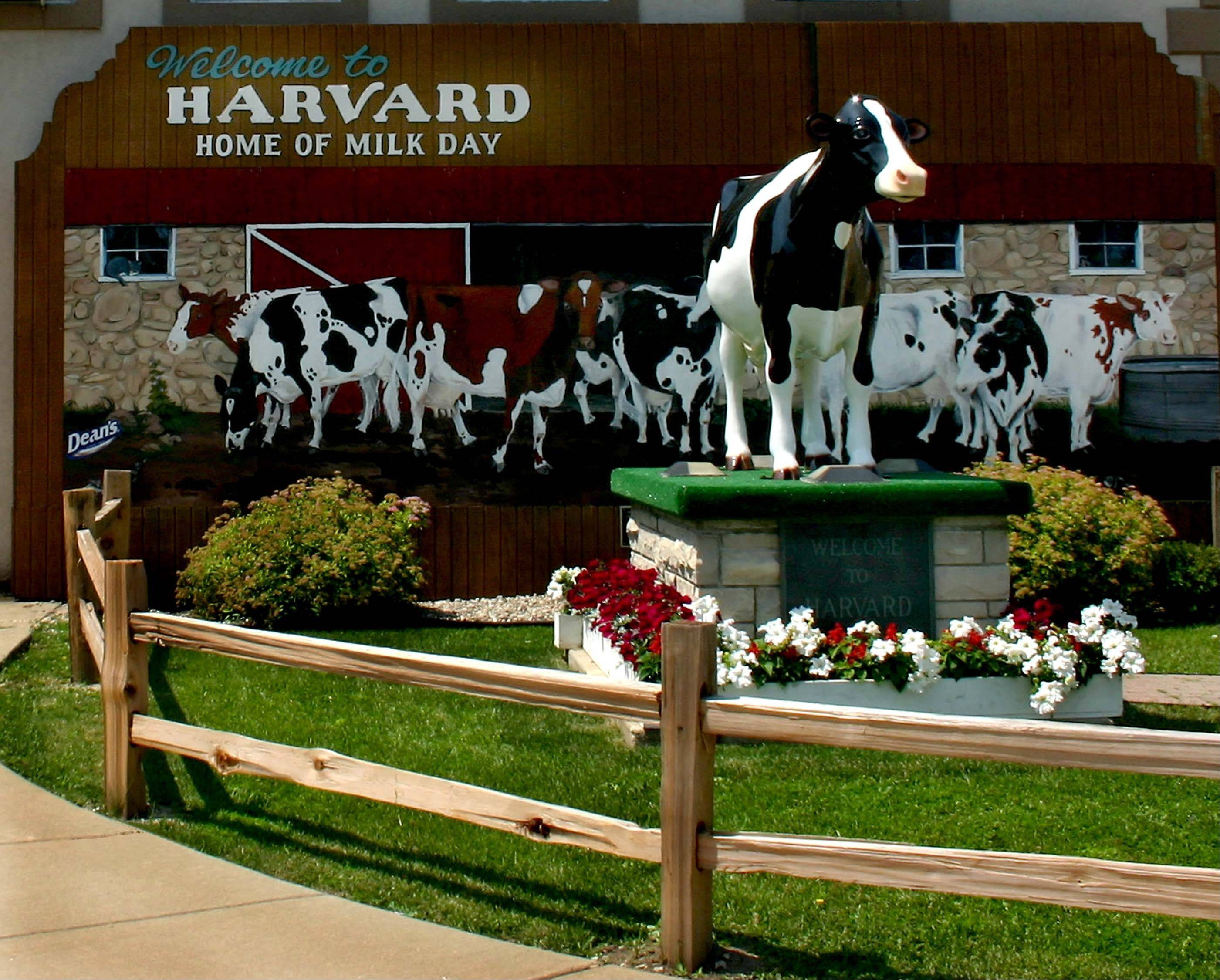 Daily Herald file photo Head to Harvard for the town's 72nd annual Harvard Milk Days festival, running Friday, May 31, through Sunday, June 2.