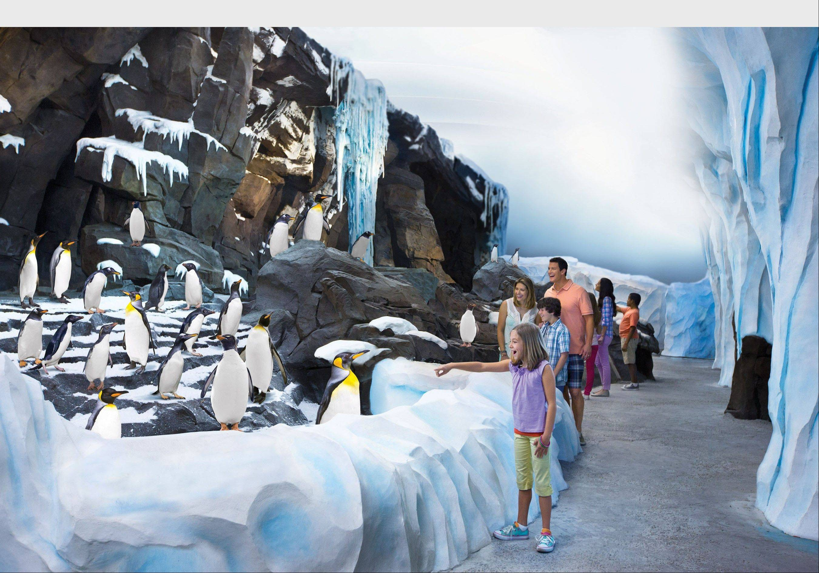 """Antarctica: Empire of the Penguin"" is now open at SeaWorld Orlando."