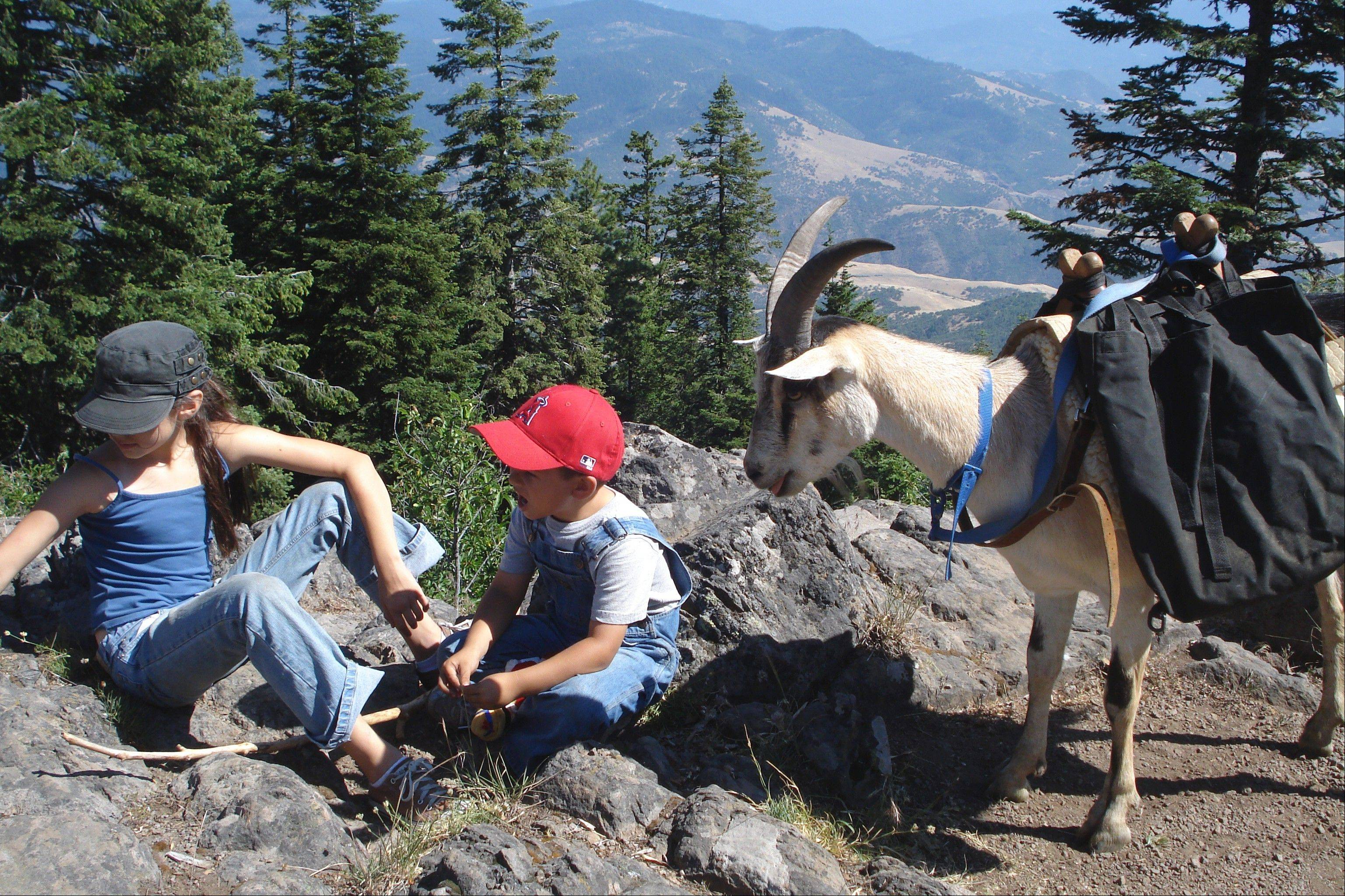 Willow Witt Ranch is located a mile high in the foothills of the Cascades above Ashland, Ore.