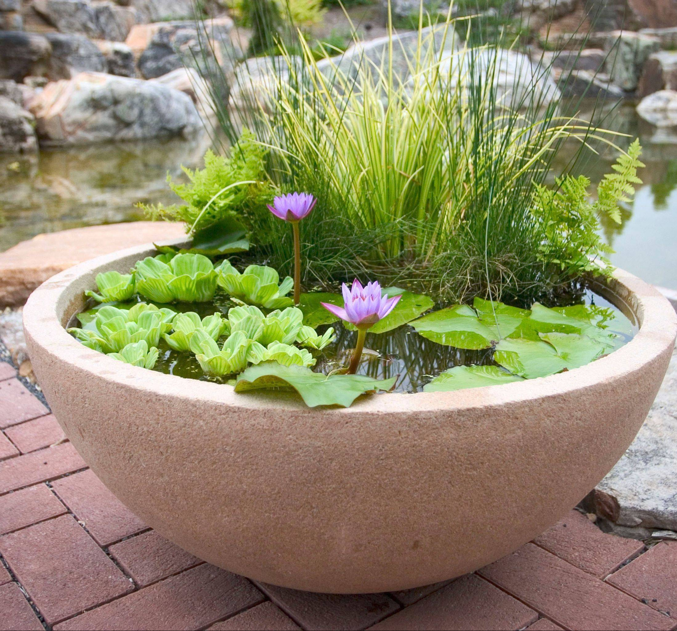 Aqua bowls allow families to bring a water feature to their yard with less maintenance than a pond or waterfall.