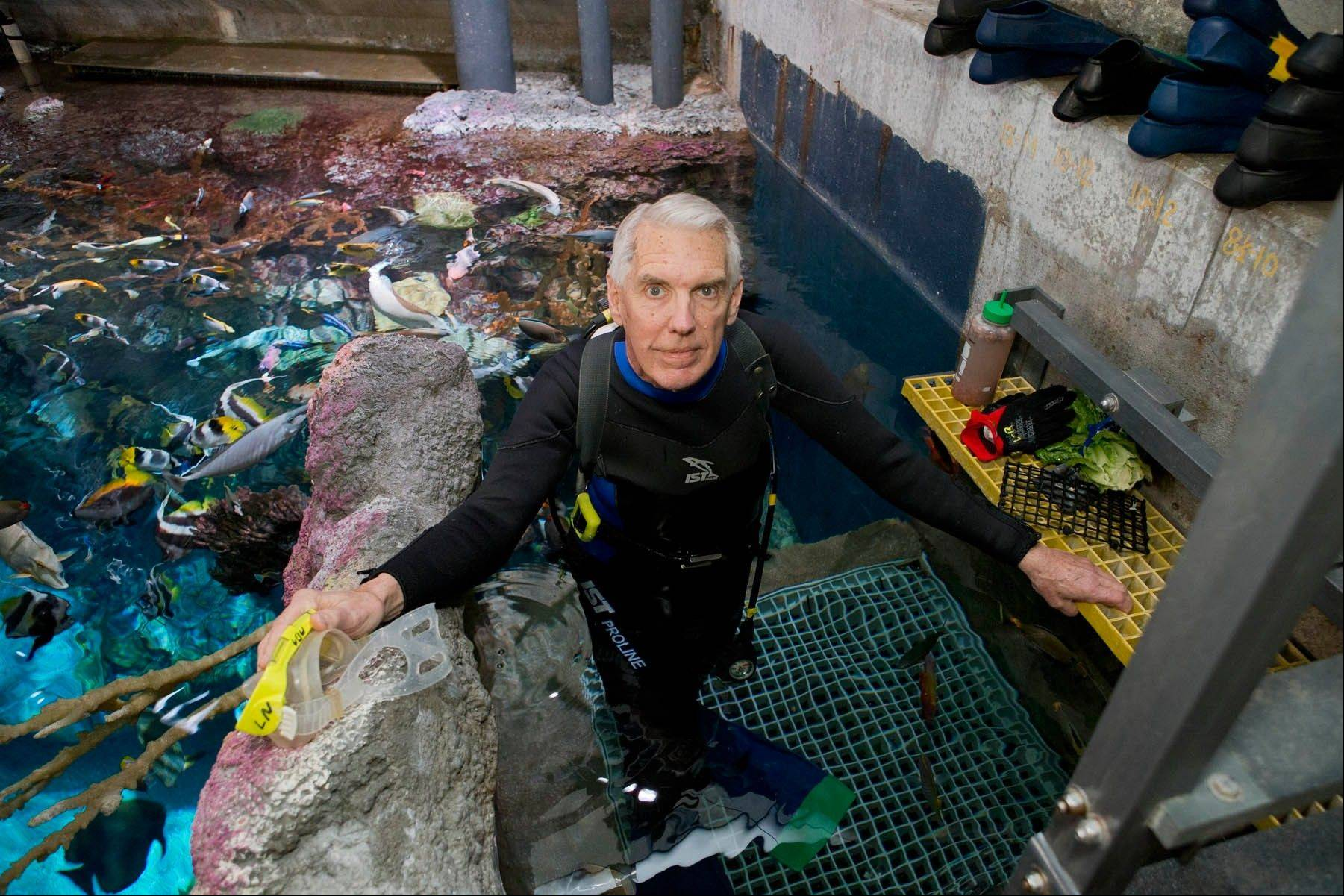 Lou Nesslar spends at least two days a week volunteering at the Shedd Aquarium, where he has put in more than 8,000 hours since he started 10 years ago.