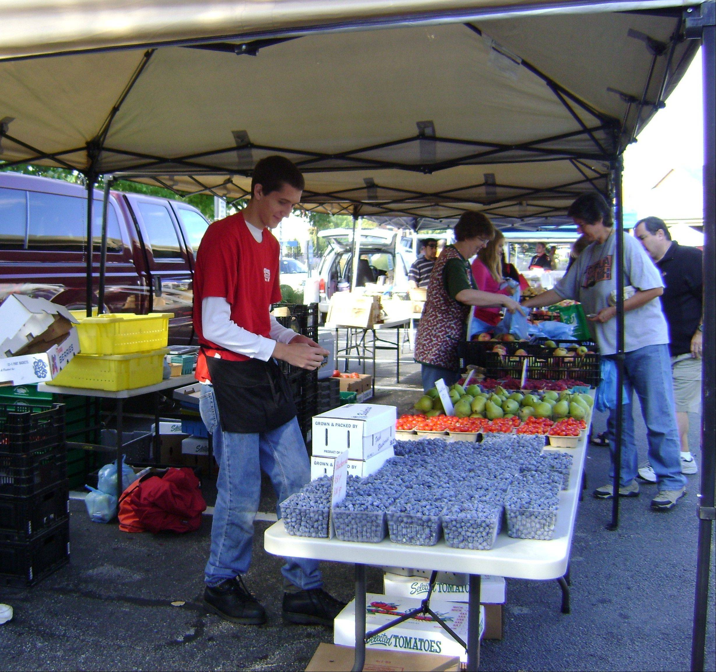 Fruits and berries are harvested and make their way to local farmers markets within a few days. Vendors will share information on where their food is grown.