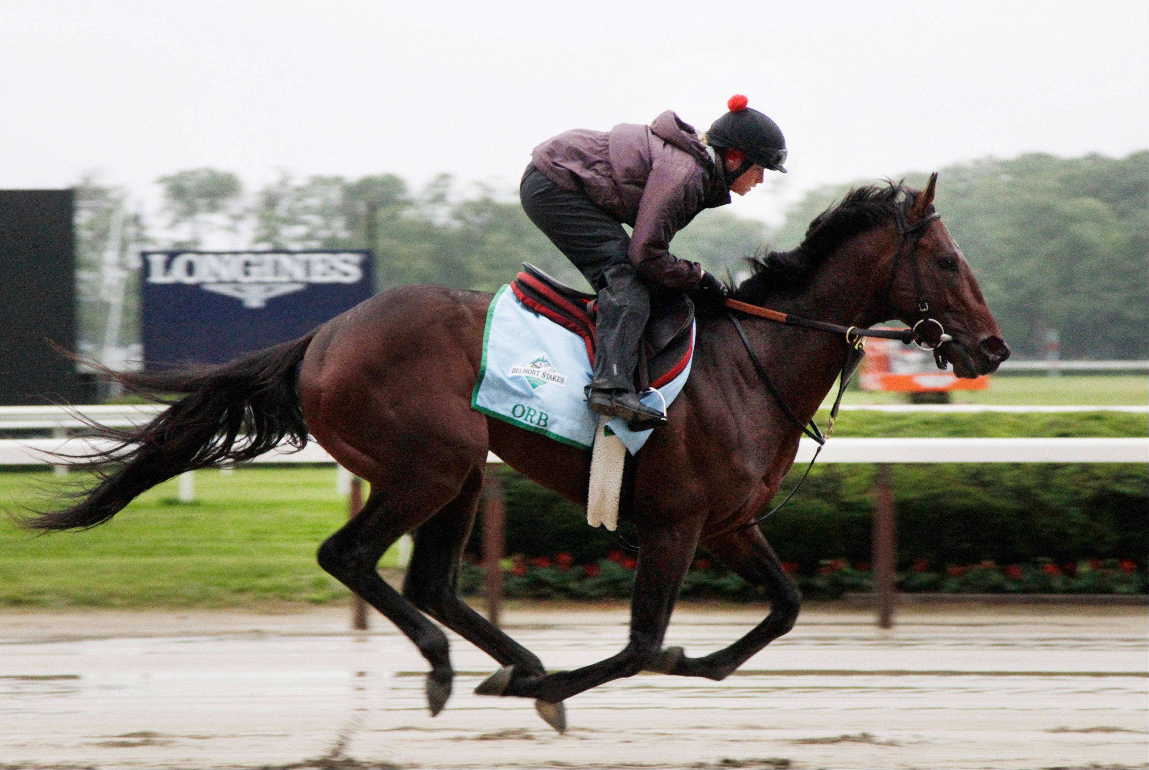 With a storm center on the East Coast, it could be a sloppy track for Orb and other contenders in Saturday's Belmont Stakes. Meanwhile, Arlington International hosts four stakes races Saturday at the local track.