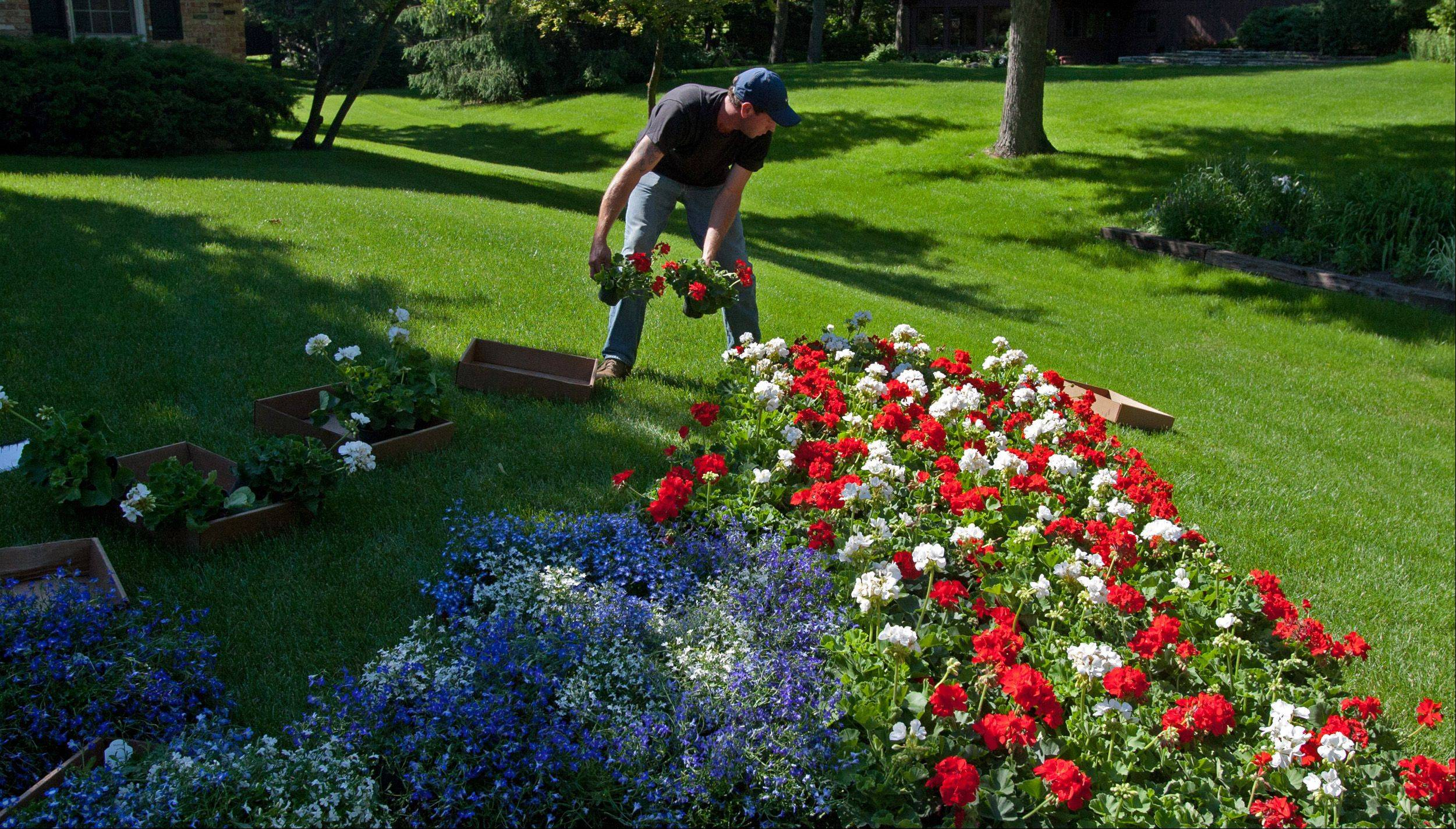 Glen Ellyn resident Chris Clayton arranges a flag of flowers in honor of fallen FBI Special Agent Christopher Lorek, who died in a May 20 counterterrorism training exercise. Clayton is a neighbor of Lorek's parents, Bill and Janet Lorek, as well as a good friend of his surviving brother, Jason.